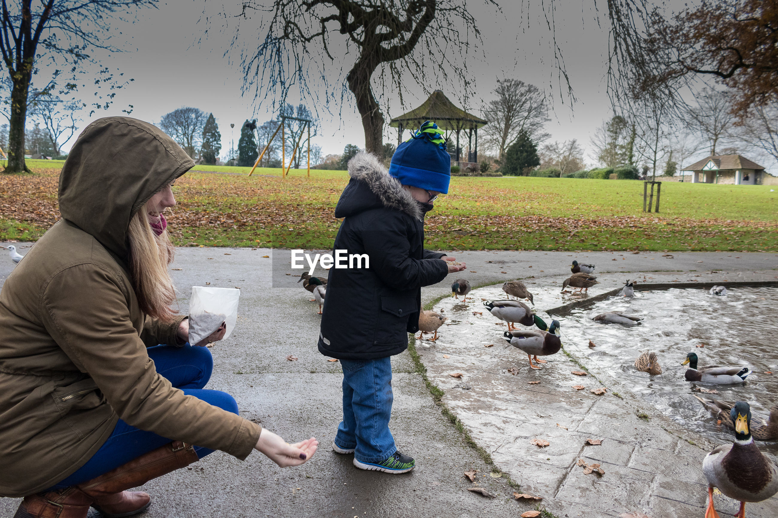 Side view of young woman with son feeding ducks by pond in park