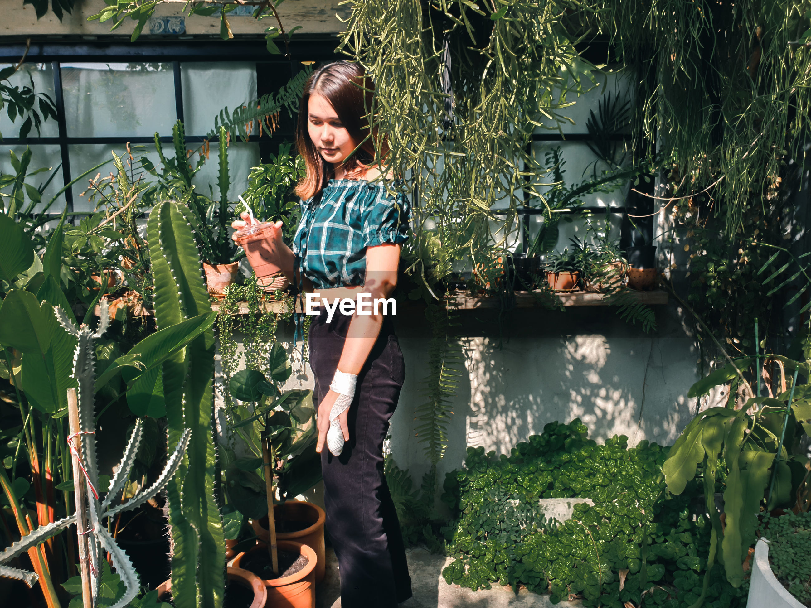 Full length of woman holding plants