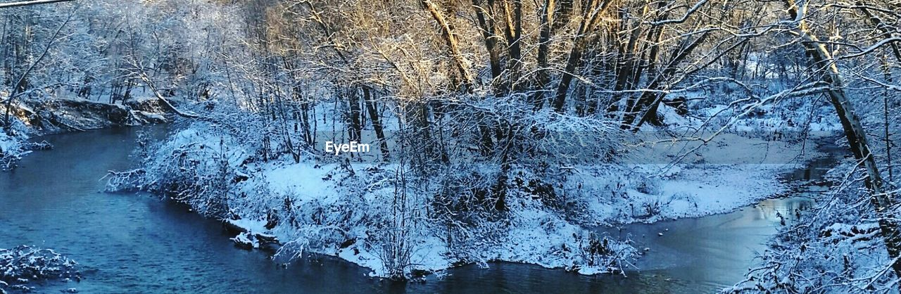 Panoramic view of stream in forest during winter