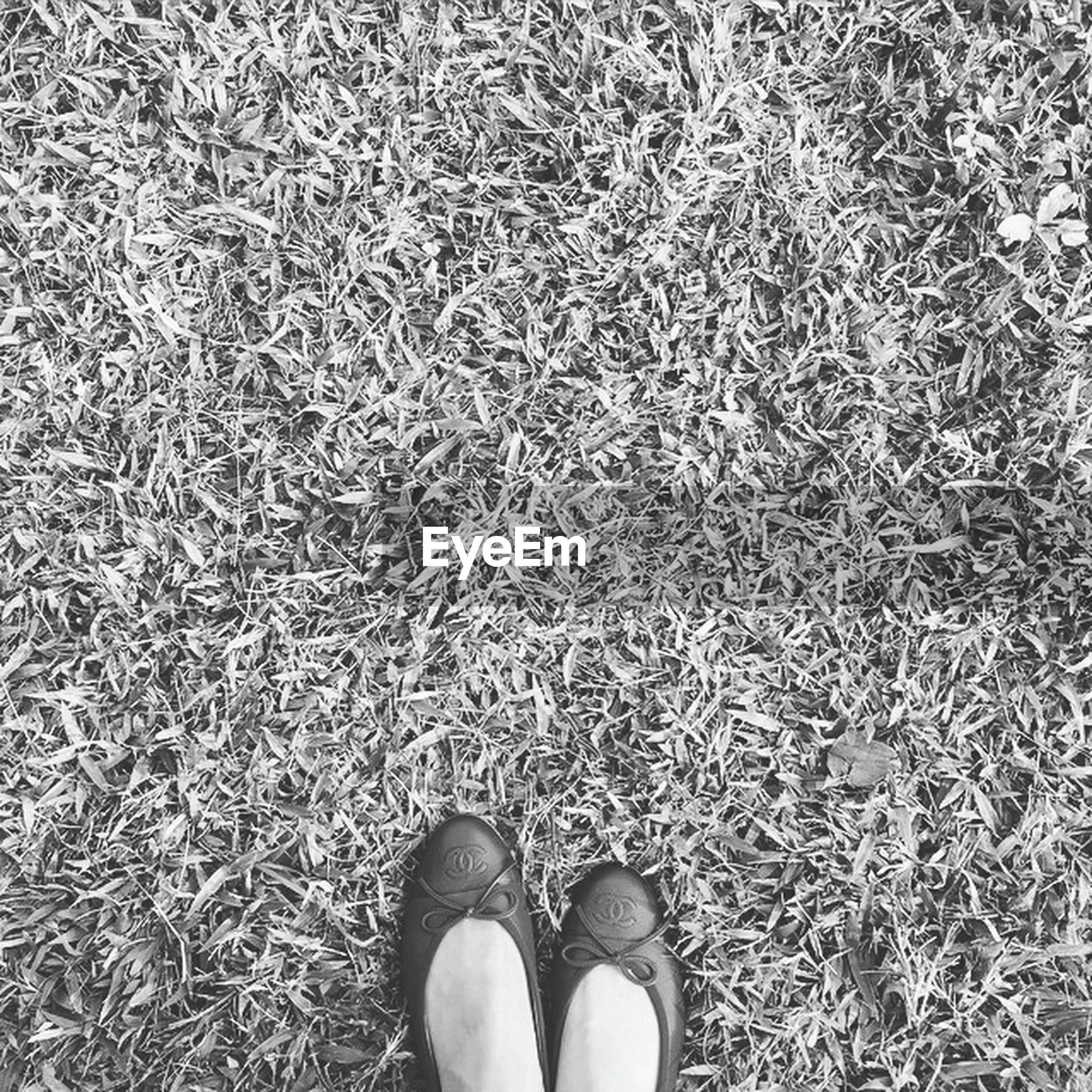 low section, person, shoe, personal perspective, standing, human foot, lifestyles, high angle view, leisure activity, footwear, unrecognizable person, men, grass, part of, field, directly above