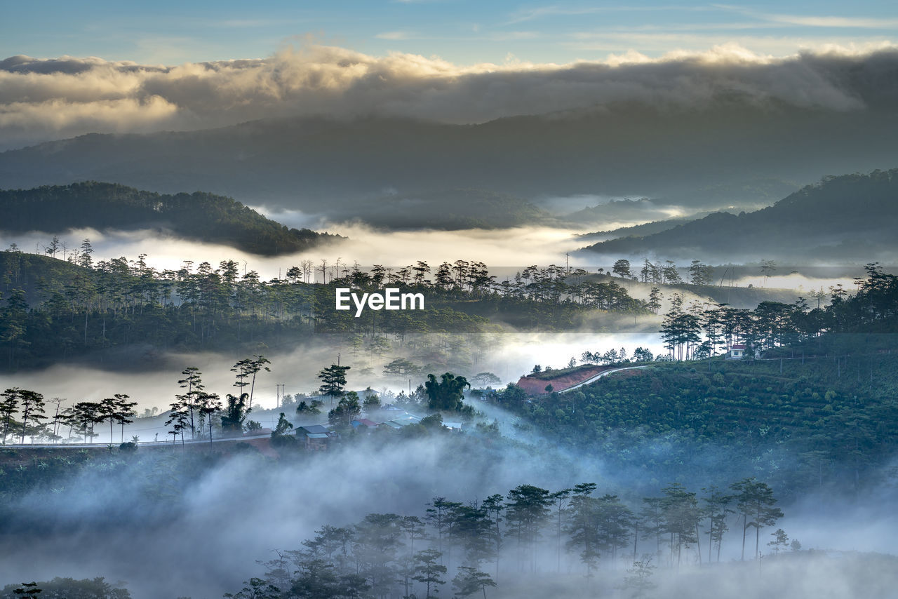 scenics - nature, beauty in nature, fog, tranquil scene, mountain, tranquility, sky, cloud - sky, tree, environment, non-urban scene, no people, plant, nature, landscape, idyllic, remote, day, mountain range, hazy