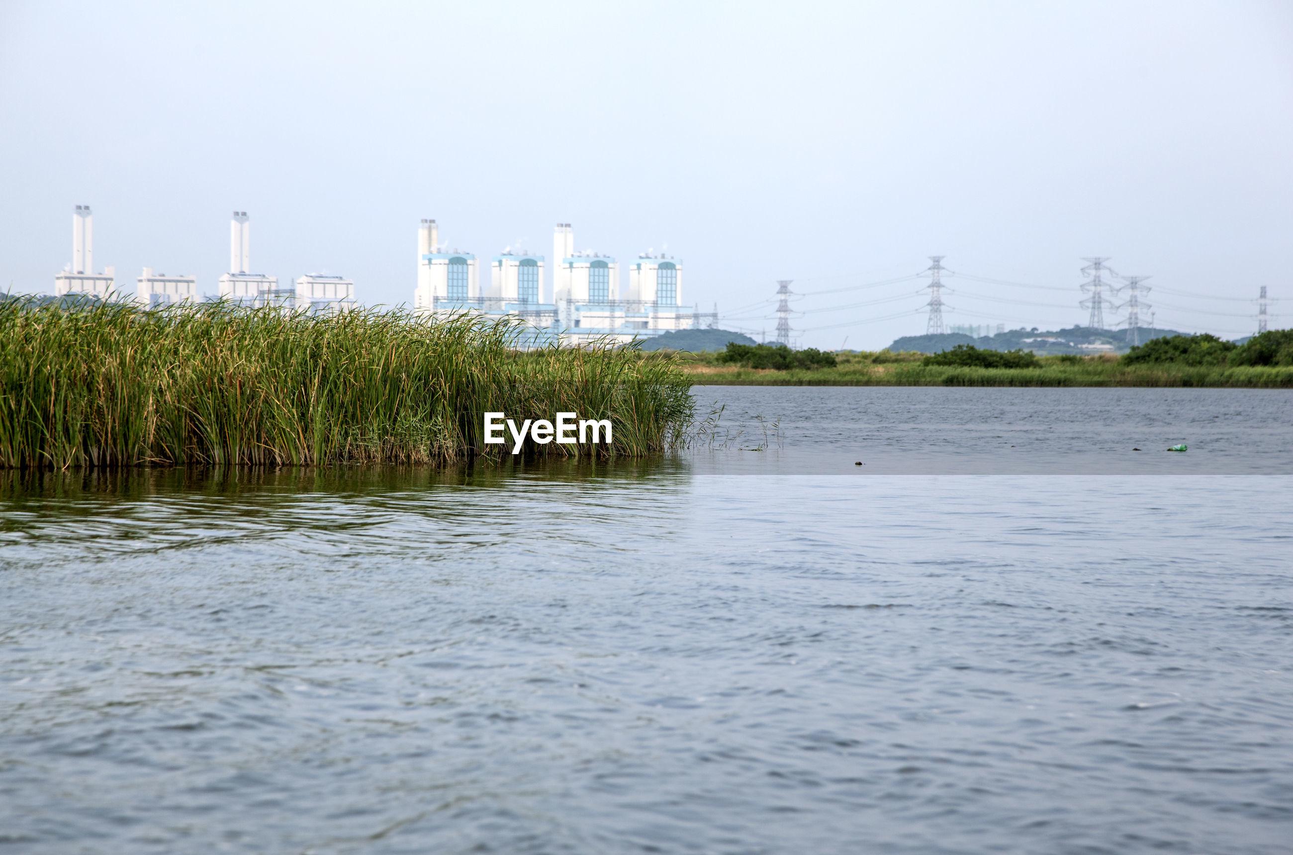 Calm lake against plants