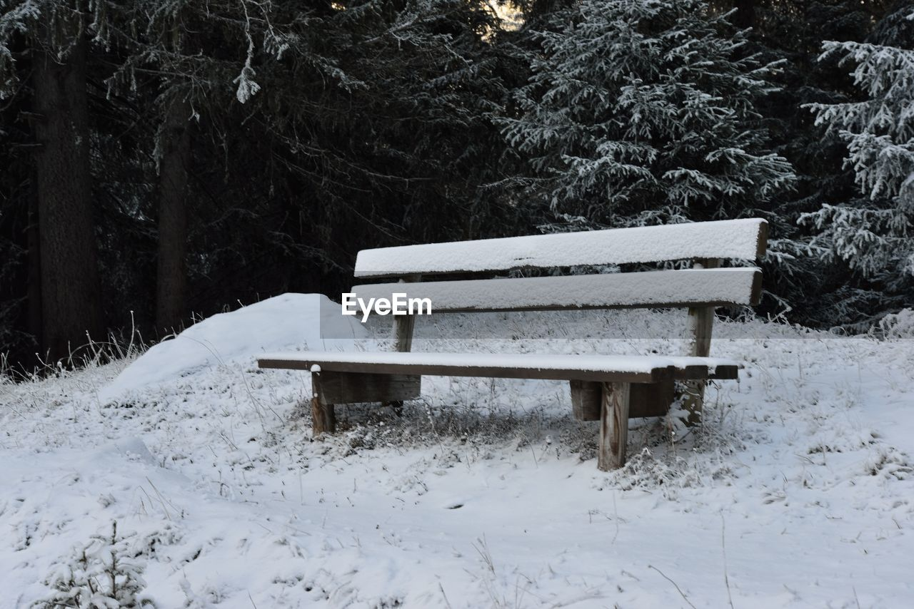 snow, cold temperature, winter, bench, plant, white color, tree, nature, land, seat, field, covering, day, absence, no people, park, beauty in nature, tranquility, wood - material, outdoors, park bench