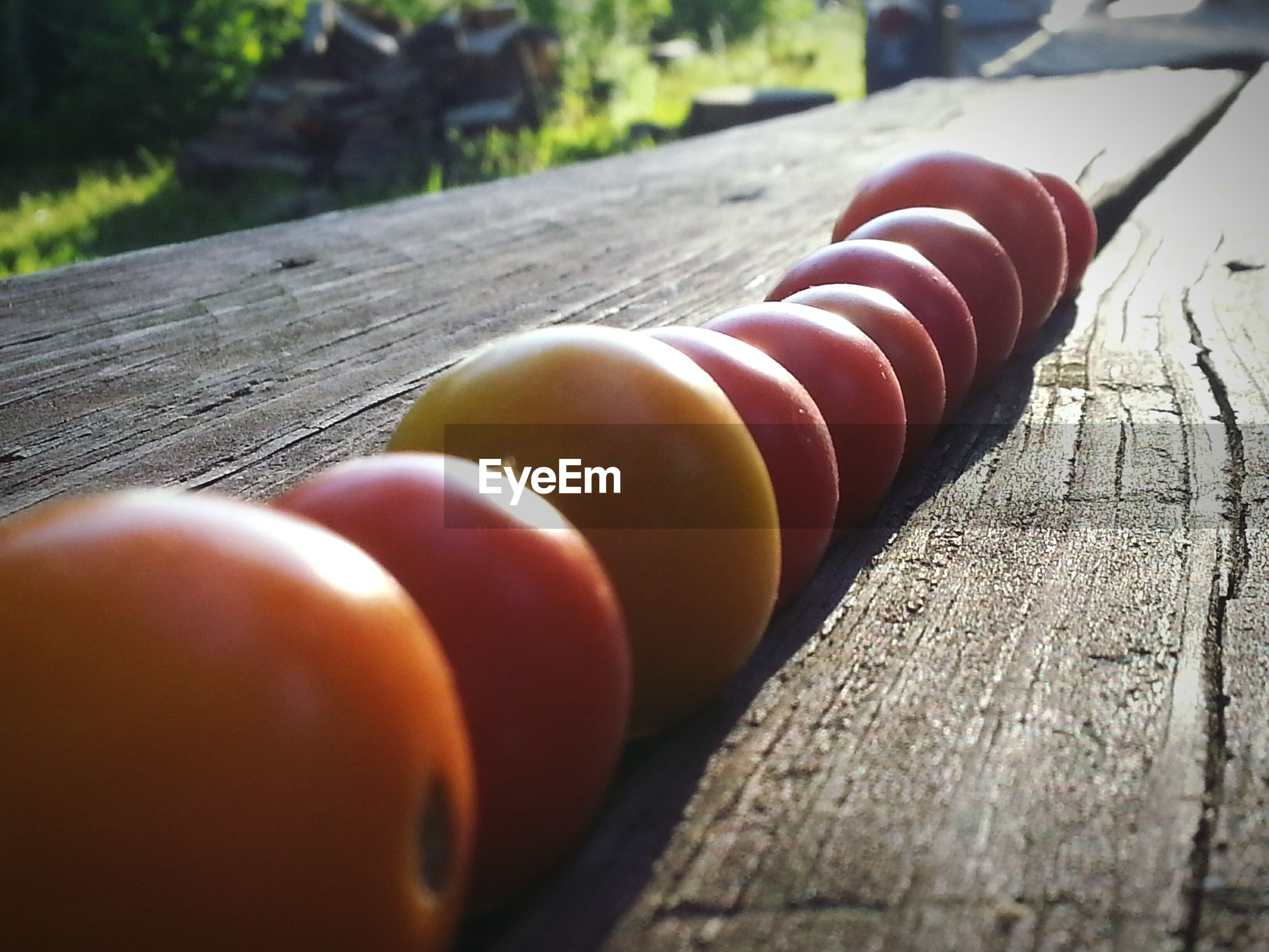 Tomatoes in a row on wooden table