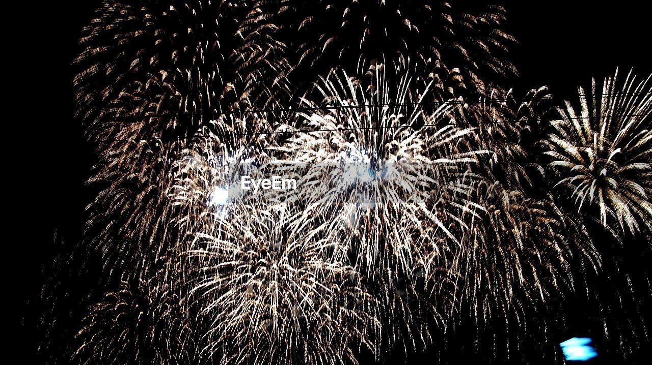 LOW ANGLE VIEW OF FIREWORKS EXPLODING
