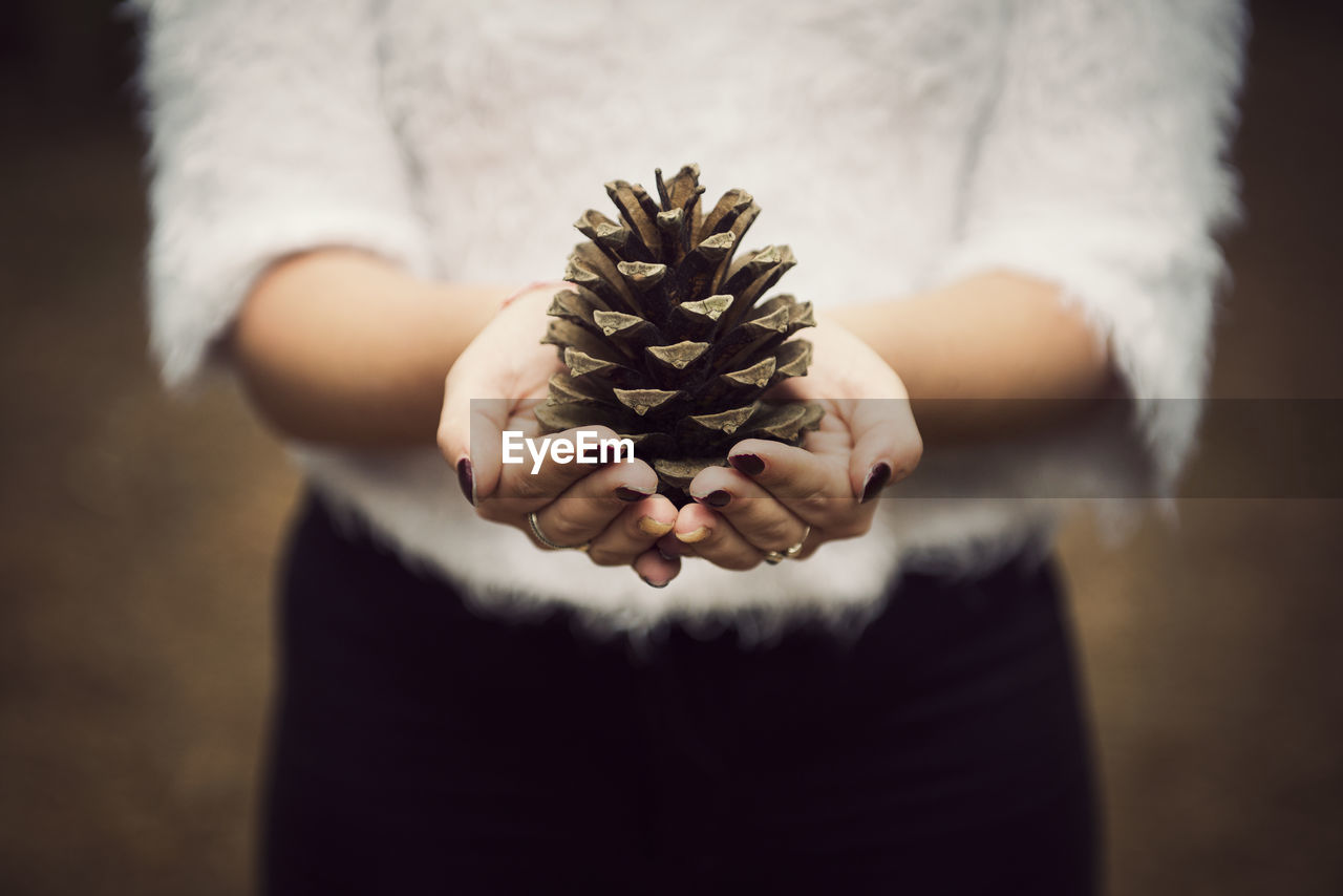 Midsection Of Woman Holding Pine Cone