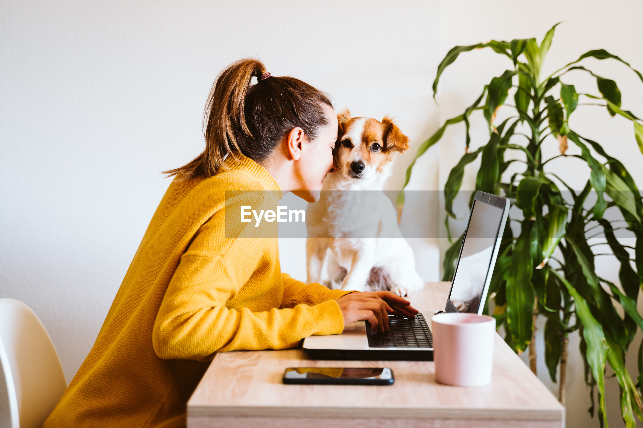 Side view of woman playing with dog while using laptop