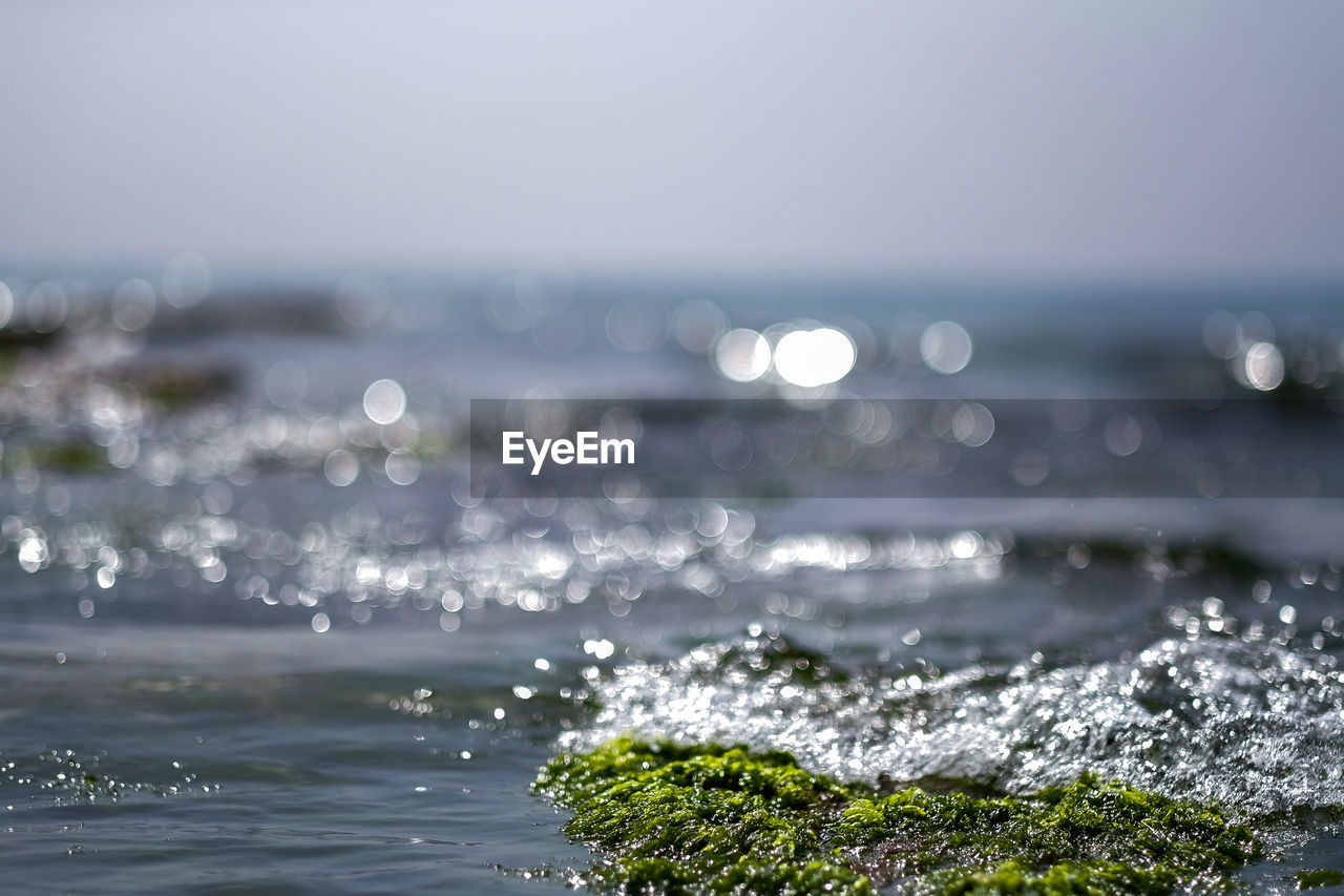 water, sea, horizon over water, motion, horizon, beauty in nature, no people, scenics - nature, nature, sky, day, outdoors, selective focus, focus on foreground, wave, land, beach, sport, sunlight