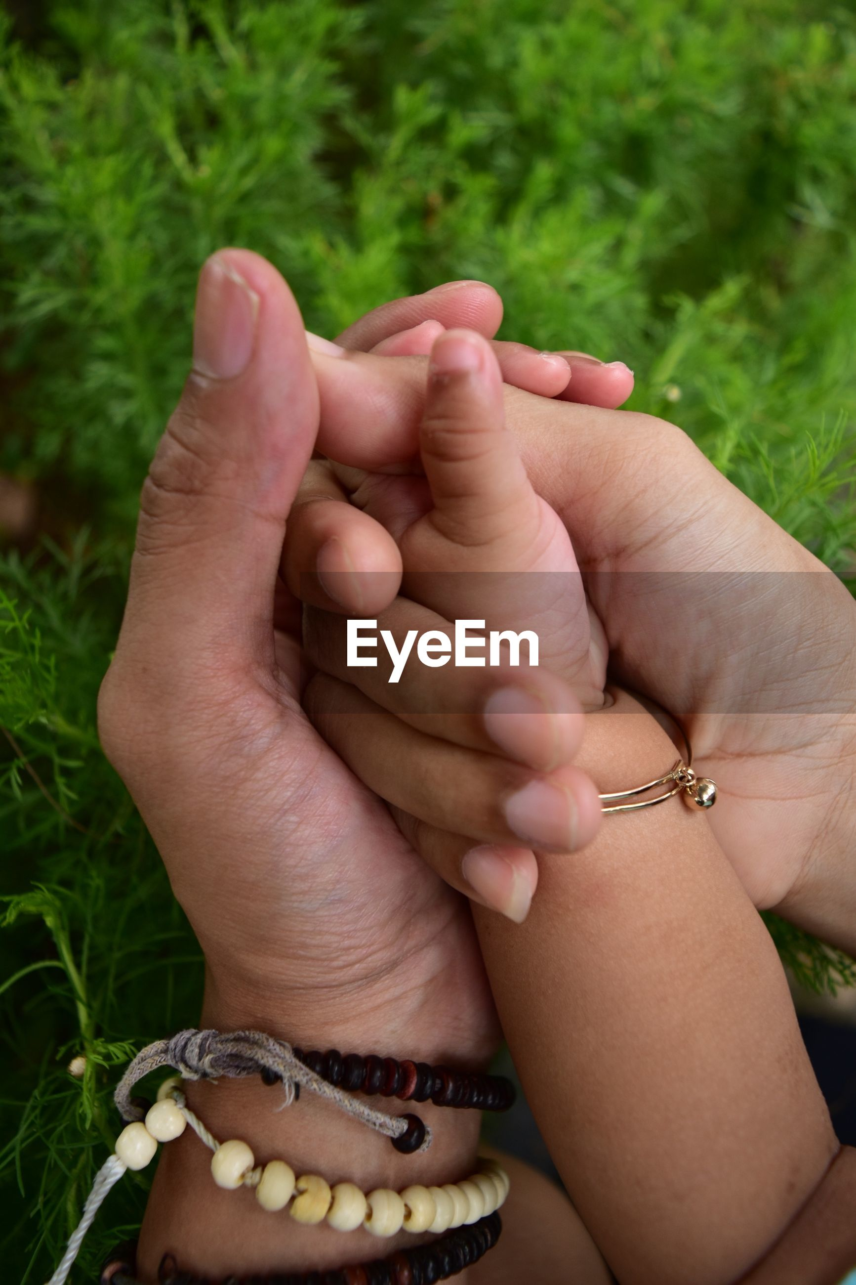 Close-up of parent hand holding baby hand against plants outdoors