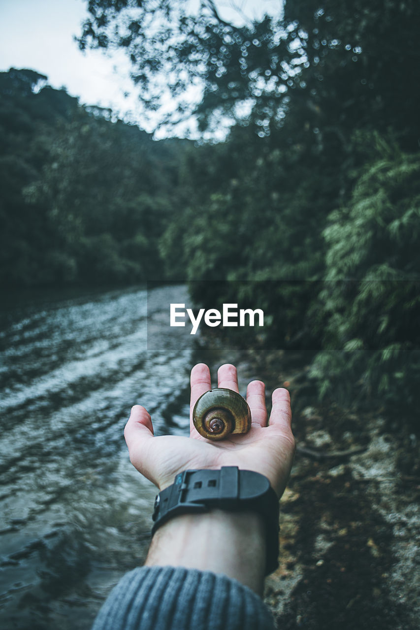 human hand, one person, real people, holding, human body part, personal perspective, human finger, day, outdoors, unrecognizable person, water, focus on foreground, river, leisure activity, nature, tree, lifestyles, men, sky, women, close-up, low section, beauty in nature, adult, people
