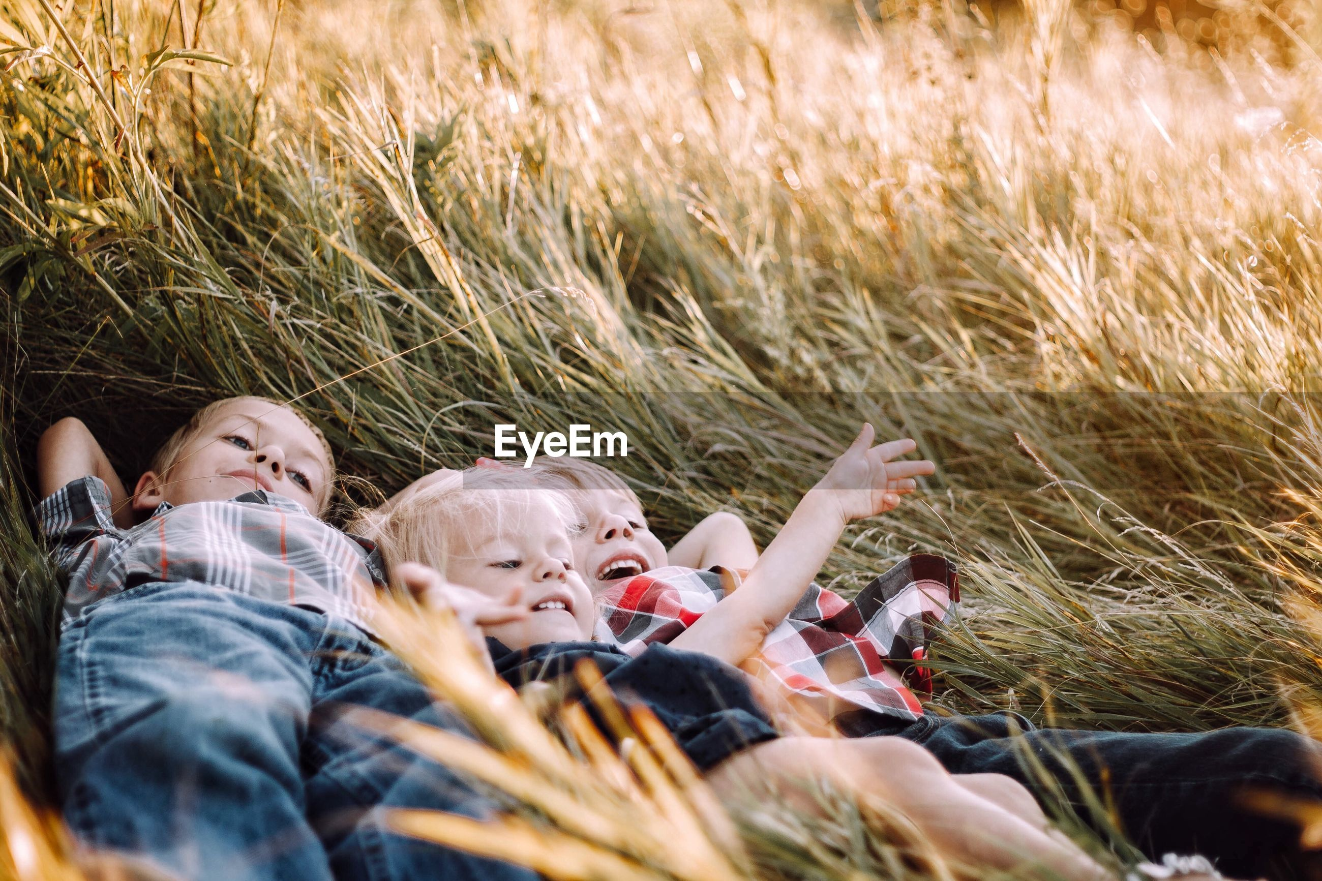 Close-up of siblings lying on grass