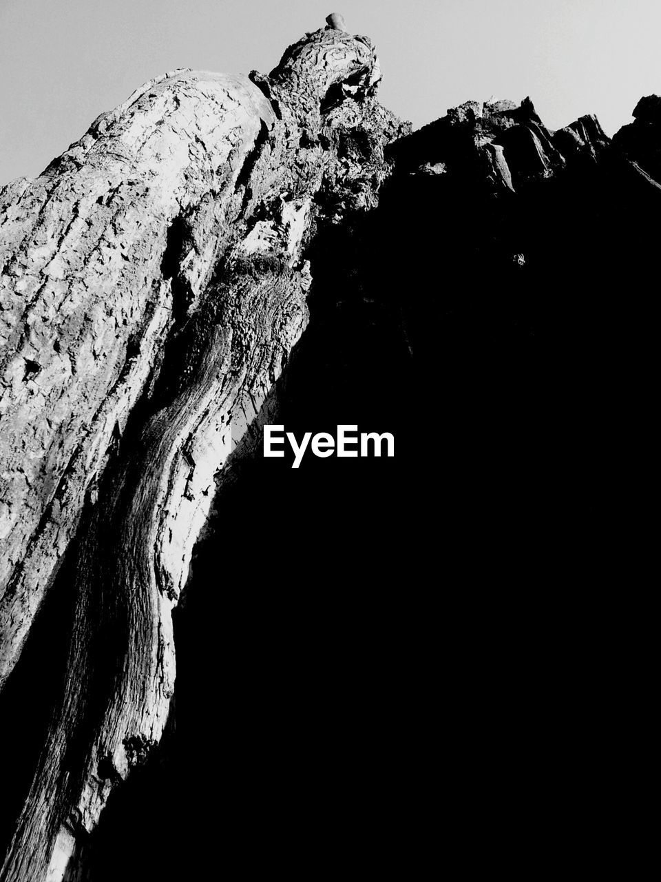 textured, rough, close-up, no people, mountain, nature, outdoors, low angle view, tree trunk, day, beauty in nature, sky, dead tree
