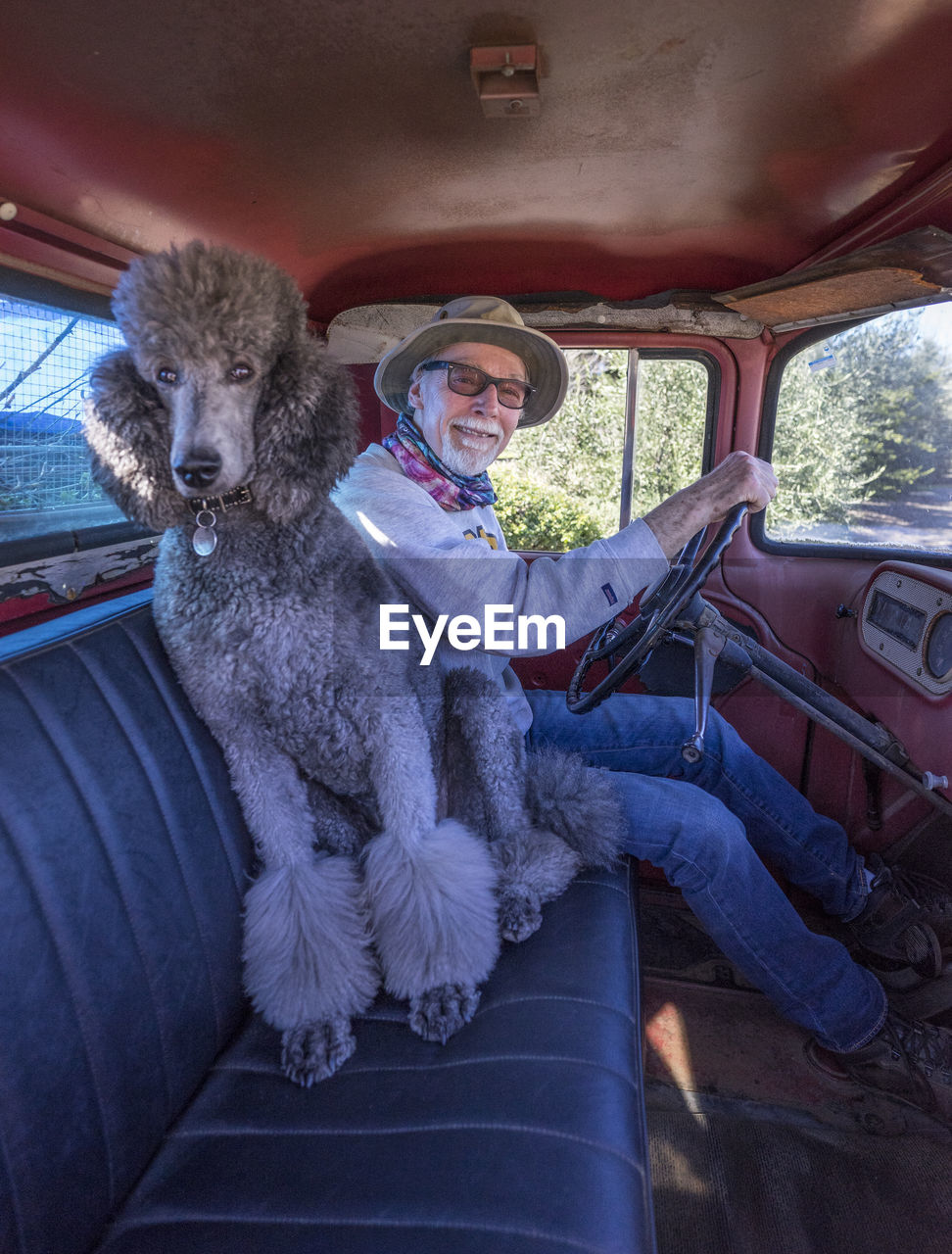 Portrait of man with dog sitting in car