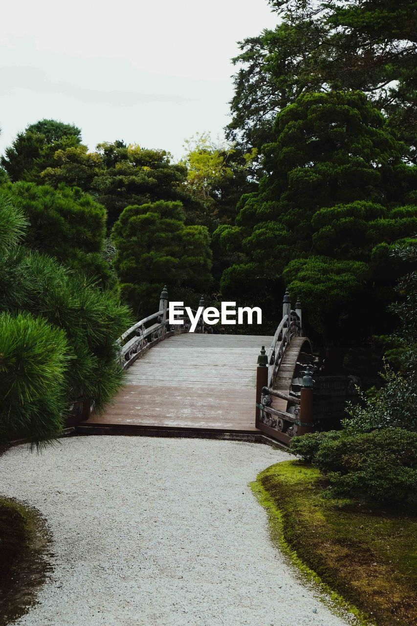 plant, tree, the way forward, direction, nature, no people, green color, growth, footpath, architecture, sky, day, park, park - man made space, outdoors, grass, connection, built structure, beauty in nature, tranquility, hedge, garden path