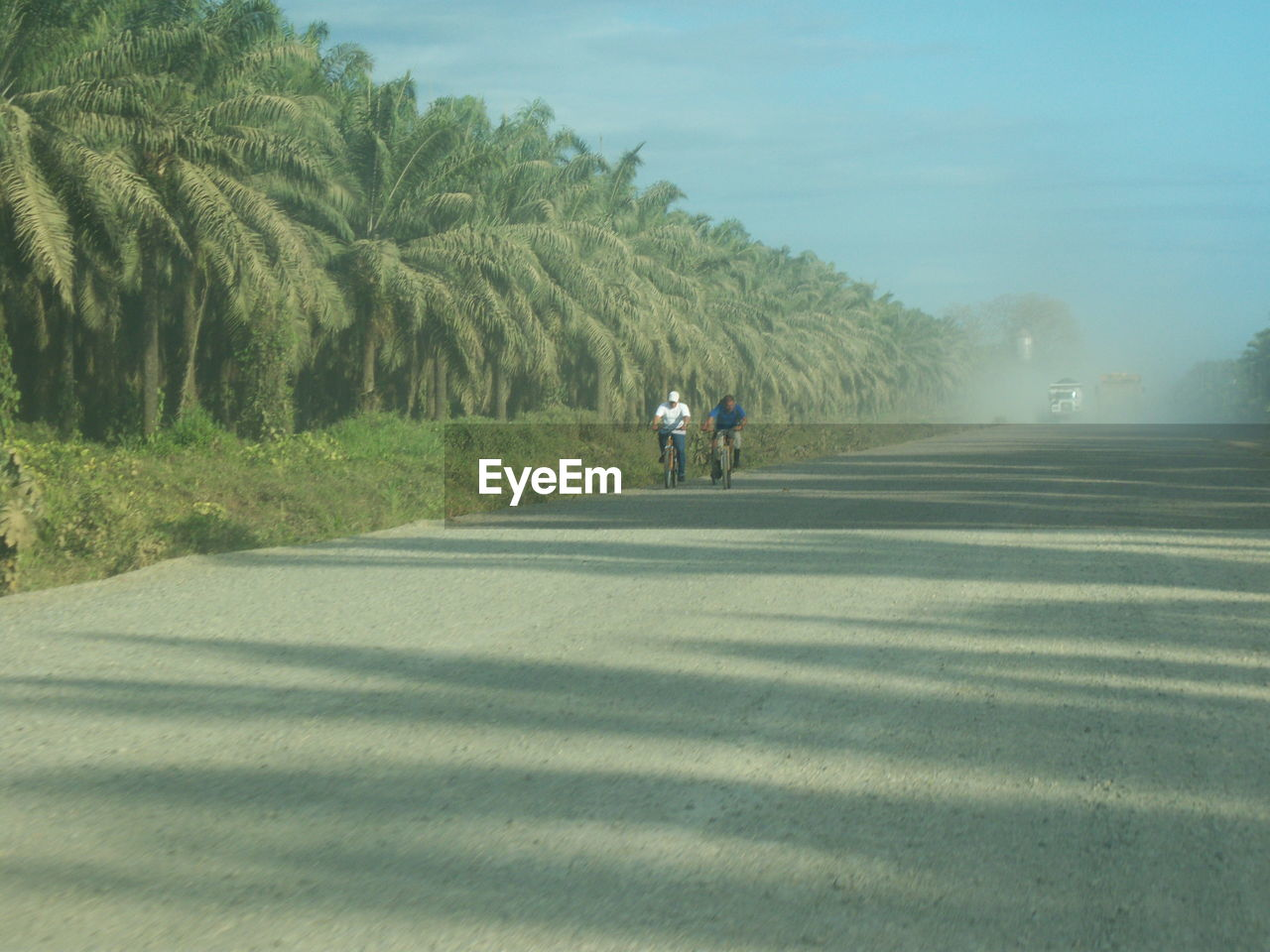 road, transportation, two people, men, day, leisure activity, bicycle, riding, outdoors, tree, real people, nature, landscape, togetherness, grass, sky, people