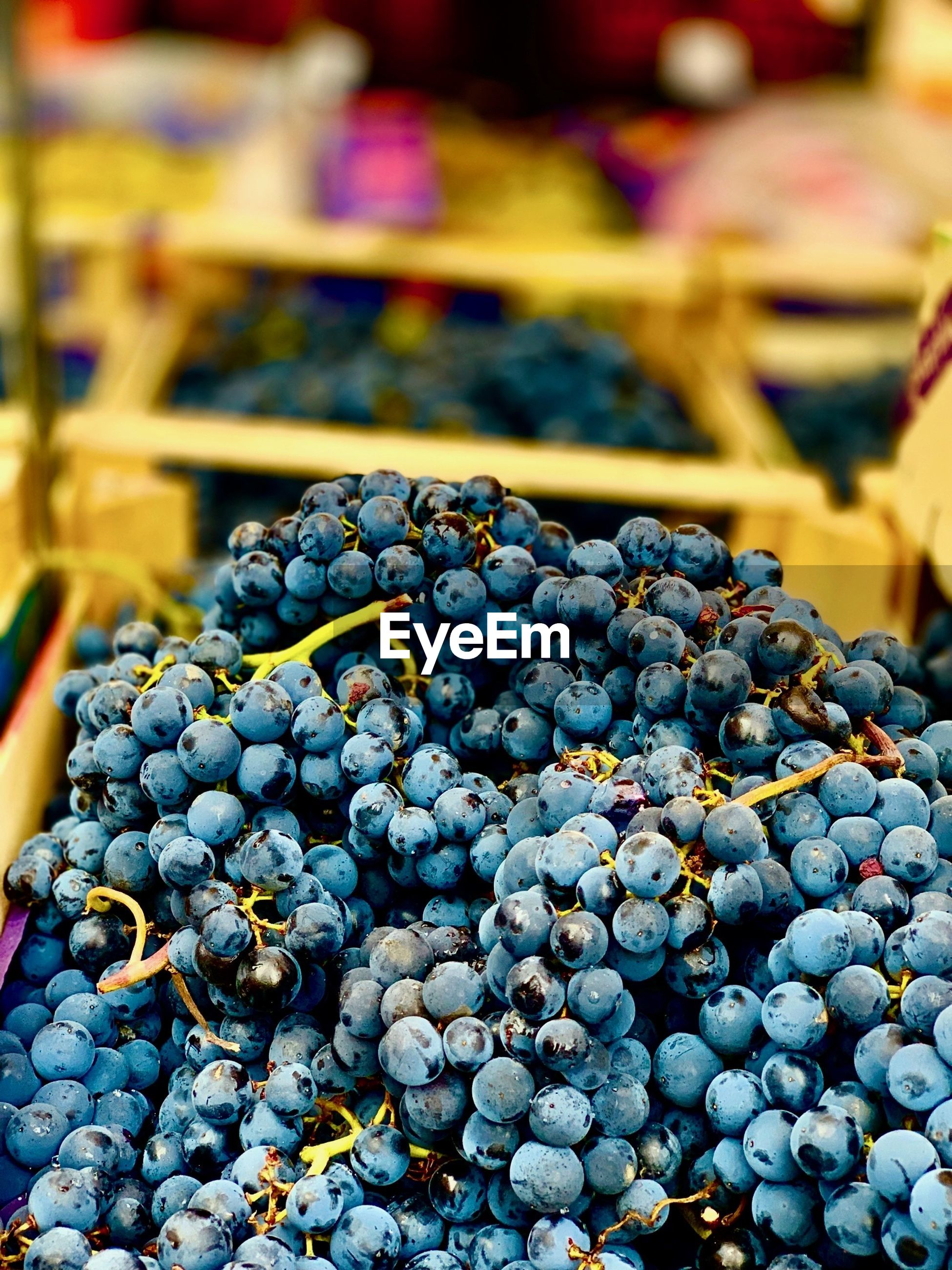 CLOSE-UP OF GRAPES FOR SALE AT MARKET