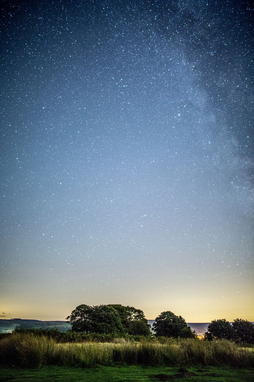 scenics - nature, night, star - space, sky, space, beauty in nature, tranquility, astronomy, tranquil scene, star, environment, nature, plant, star field, no people, landscape, land, field, idyllic, galaxy, outdoors, milky way