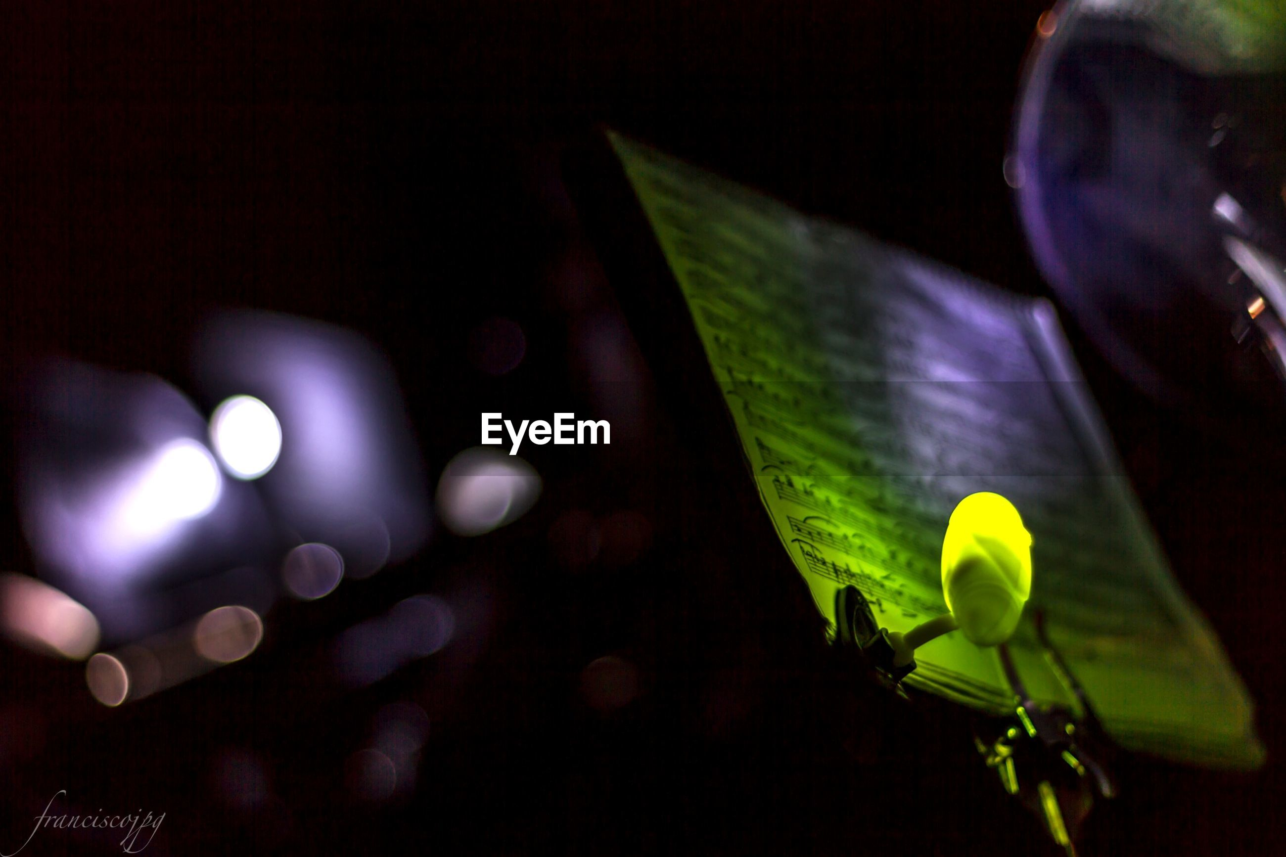leaf, close-up, growth, plant, flower, green color, focus on foreground, freshness, fragility, nature, stem, selective focus, indoors, night, beauty in nature, no people, bud, petal, sunlight