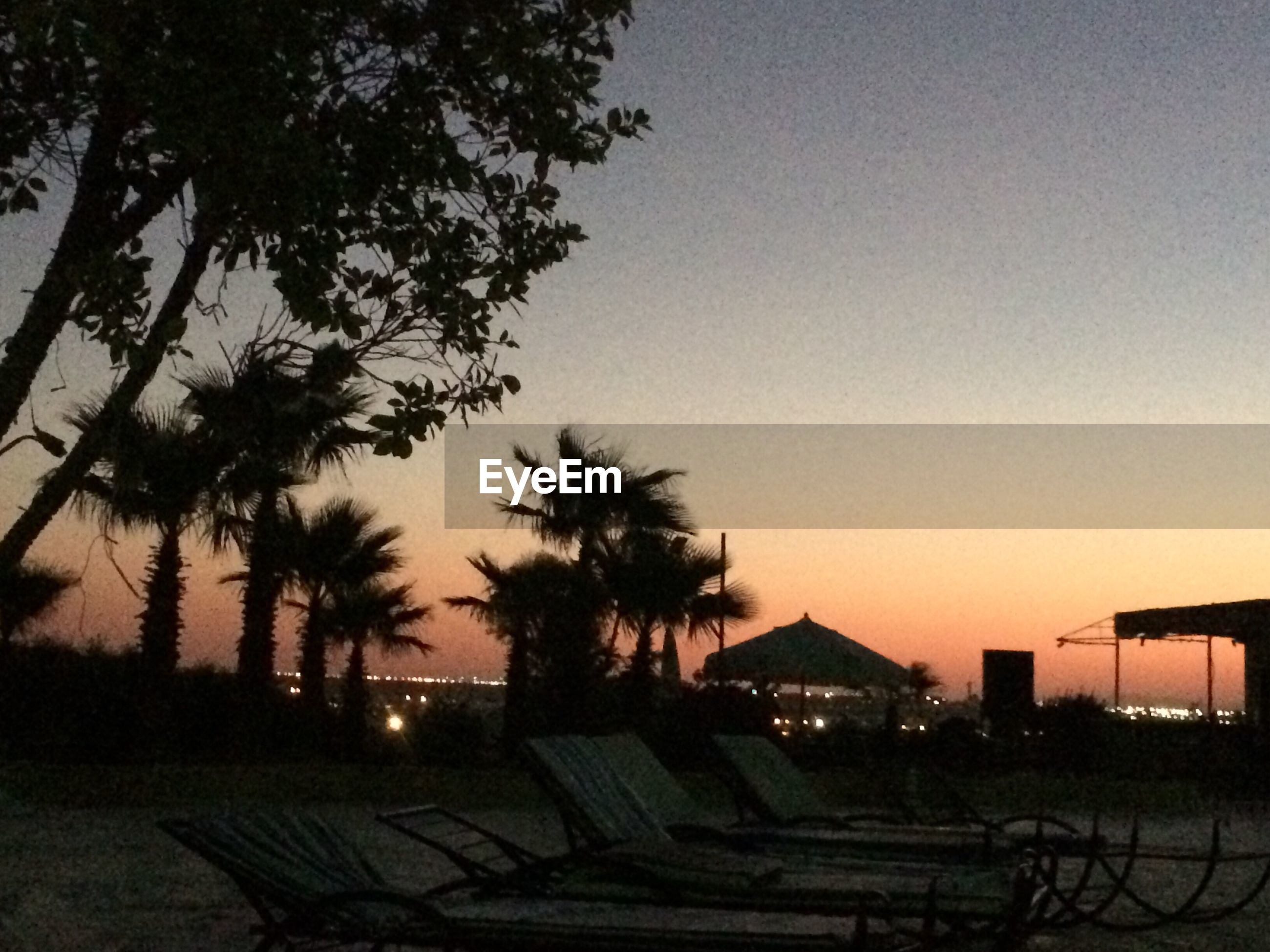 tree, sunset, no people, sky, nature, built structure, palm tree, tranquility, growth, building exterior, beach, beauty in nature, outdoors, architecture, day