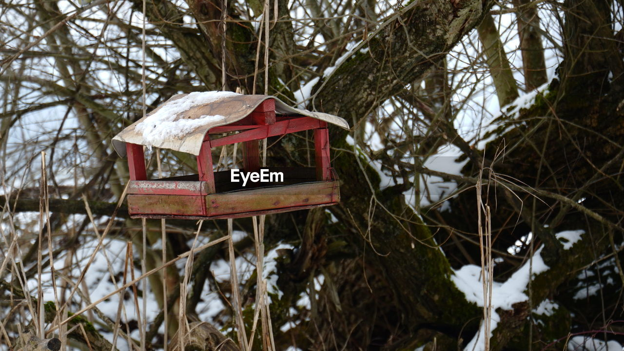 CLOSE-UP OF RED BIRDHOUSE ON TREE