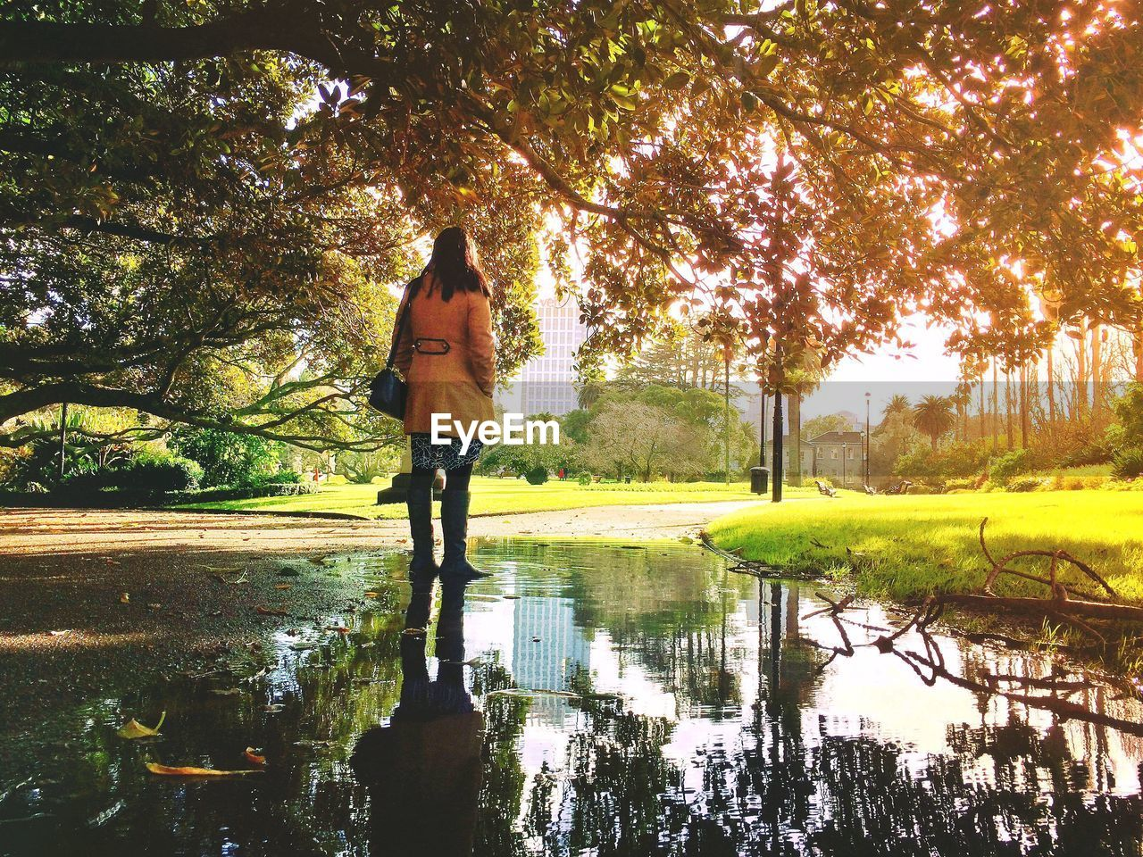 Rear View Of Woman Standing On Puddle With Trees Reflection