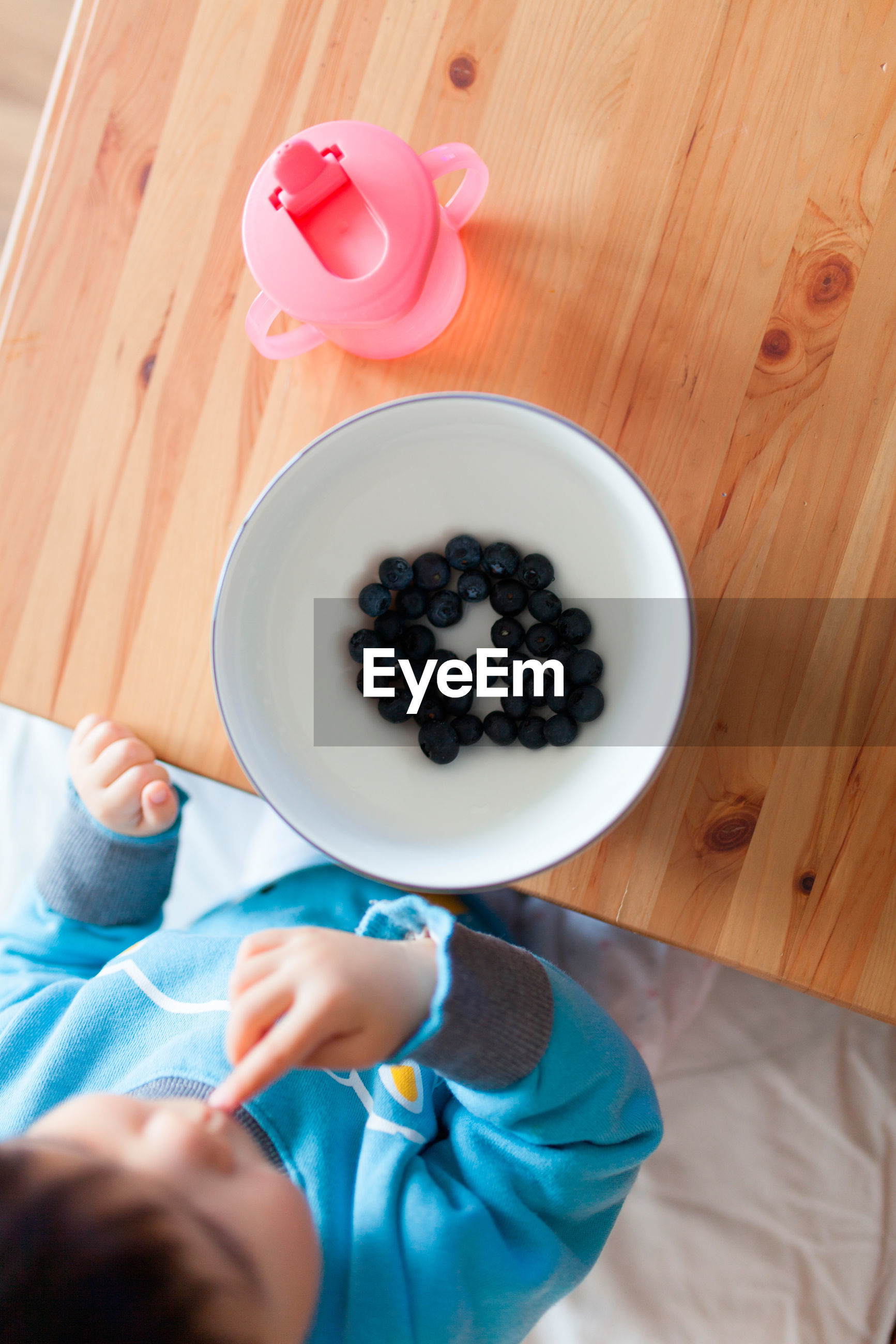 Directly above shot of boy eating blueberry while sitting at table