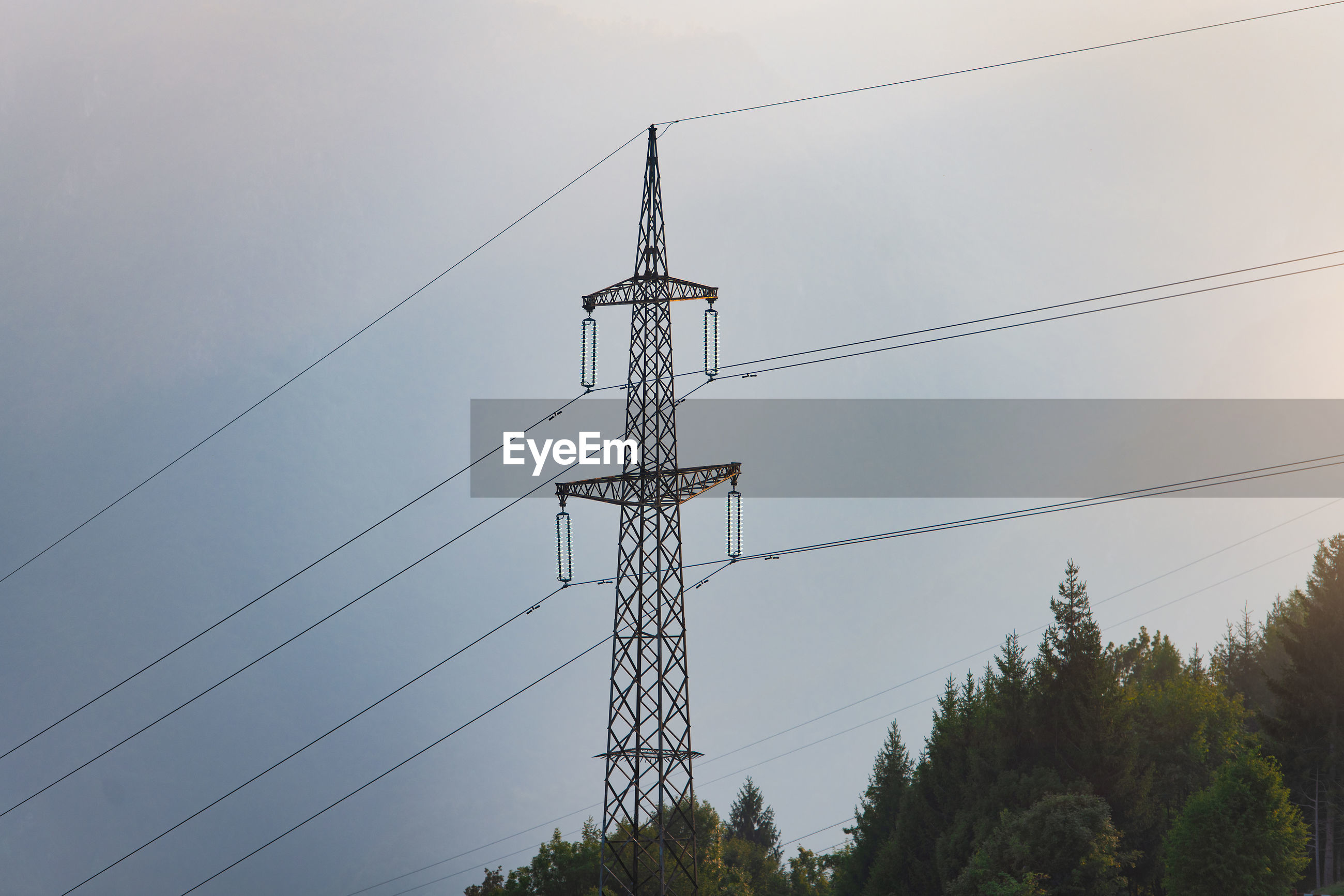 LOW ANGLE VIEW OF ELECTRICITY PYLON BY TREES AGAINST SKY