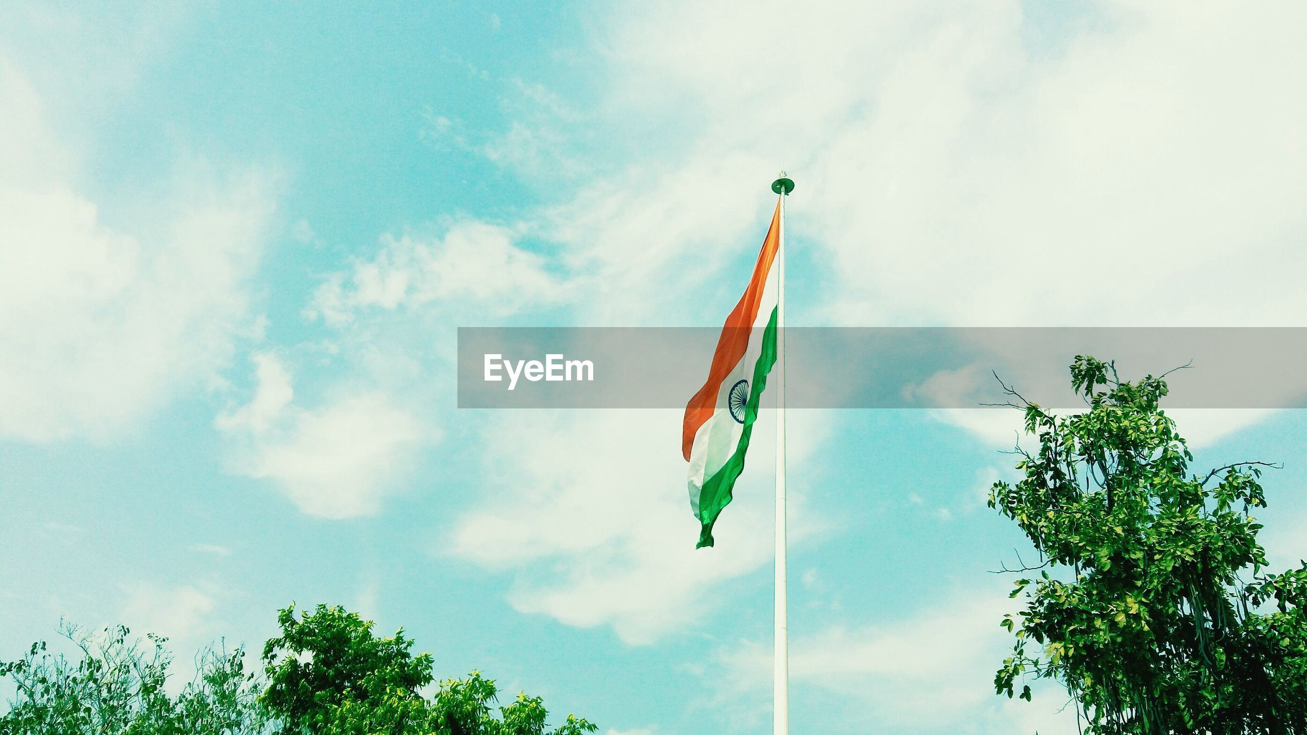 Low angle view of flag by trees