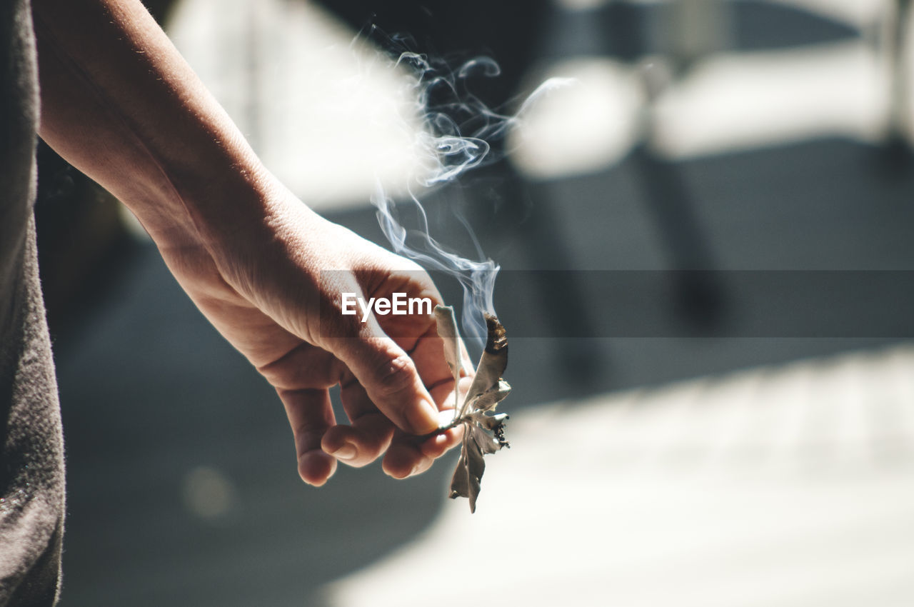 Cropped Image Of Person Holding Burning Sage Leaves