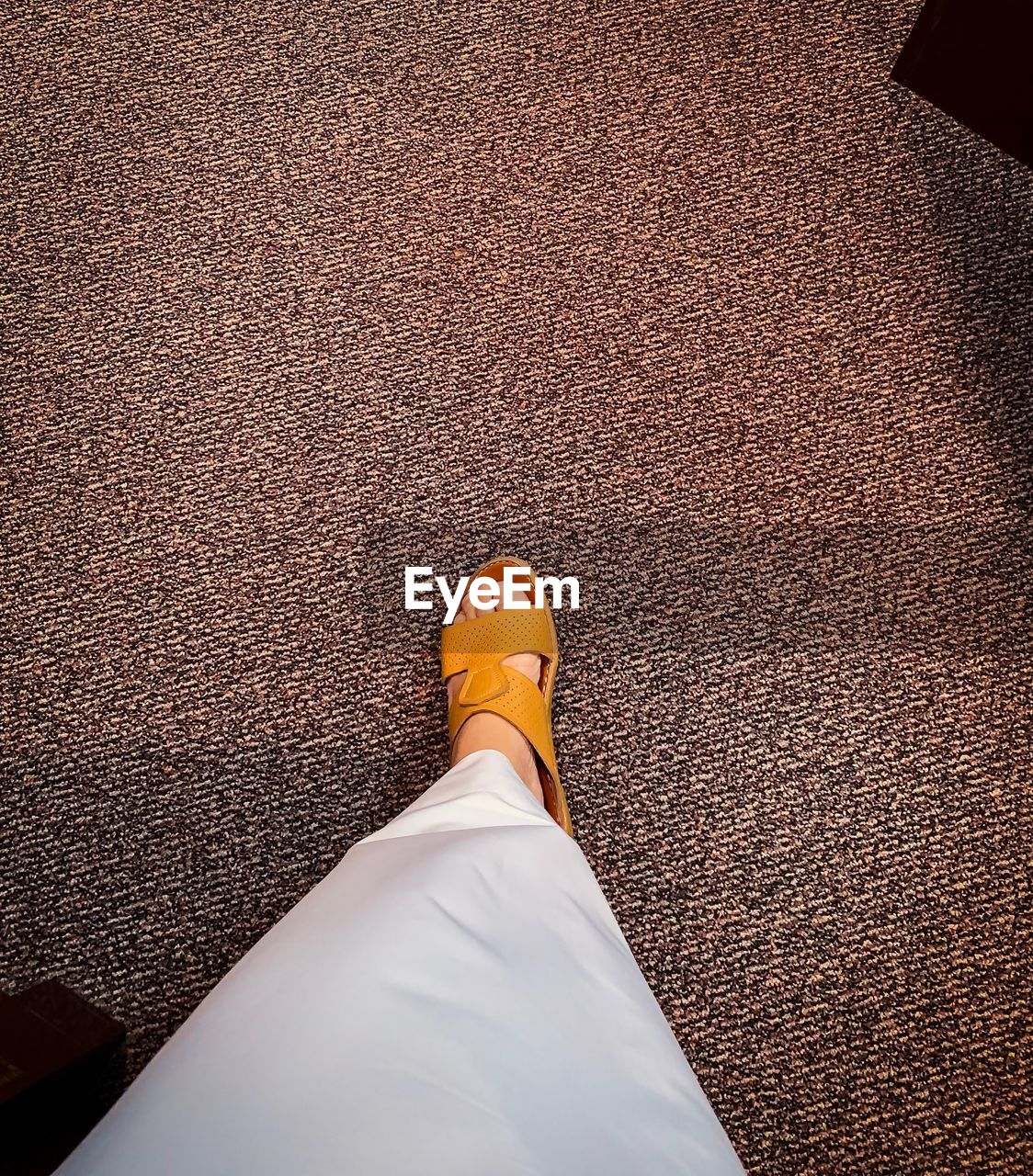 low section, human leg, shoe, one person, personal perspective, real people, body part, human body part, standing, lifestyles, high angle view, brown, men, directly above, human foot, day, flooring, carpet - decor, indoors