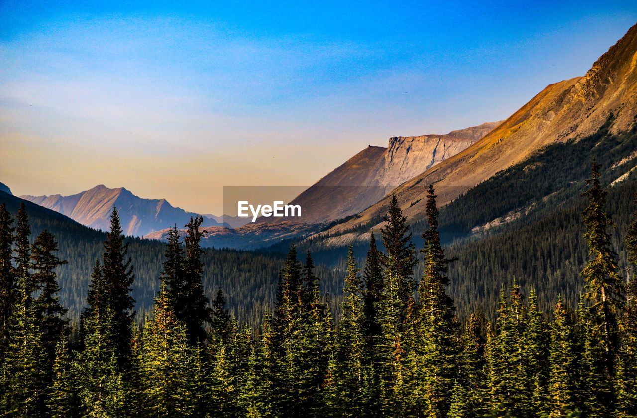 mountain, scenics - nature, beauty in nature, sky, tree, tranquil scene, plant, tranquility, non-urban scene, environment, mountain range, nature, landscape, no people, idyllic, sunset, land, forest, day, outdoors, coniferous tree, mountain peak