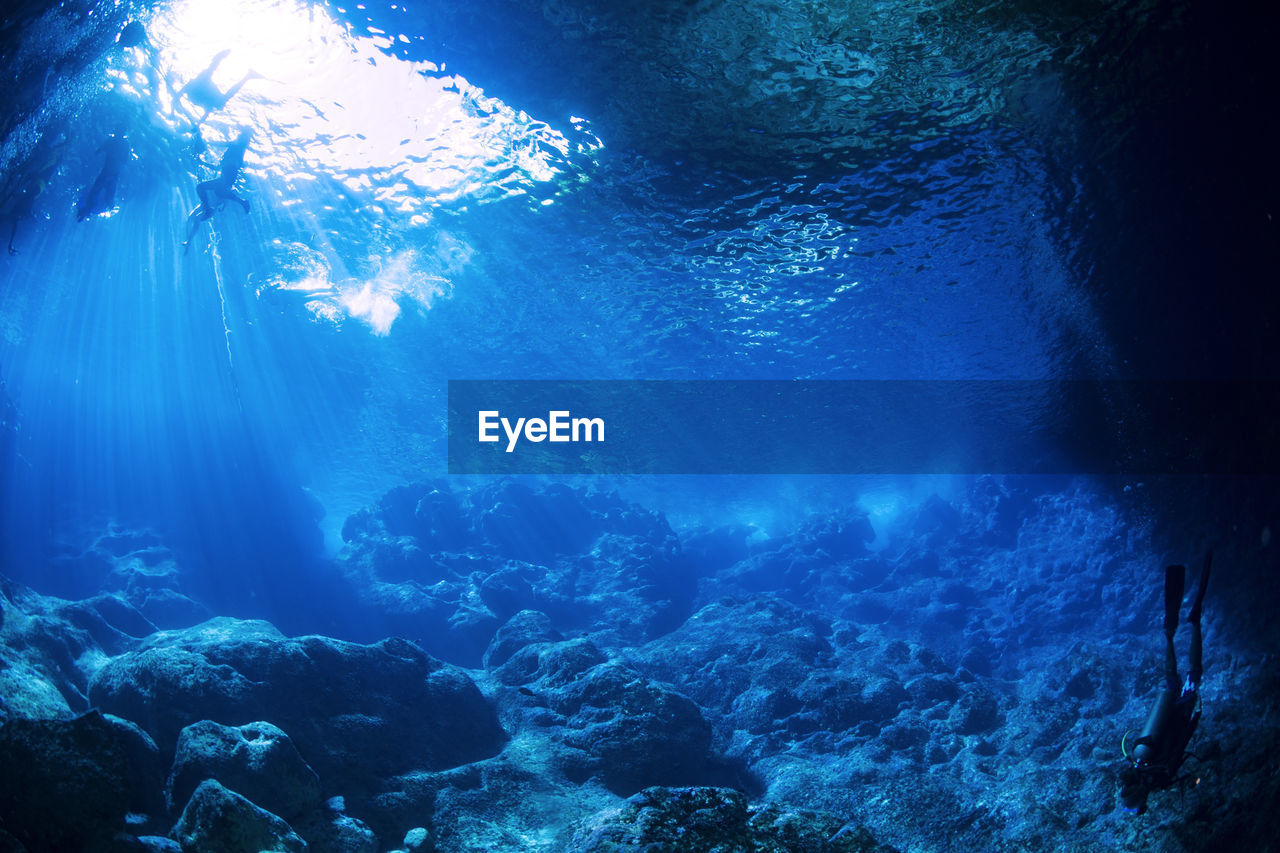 People Swimming In Sea Underwater
