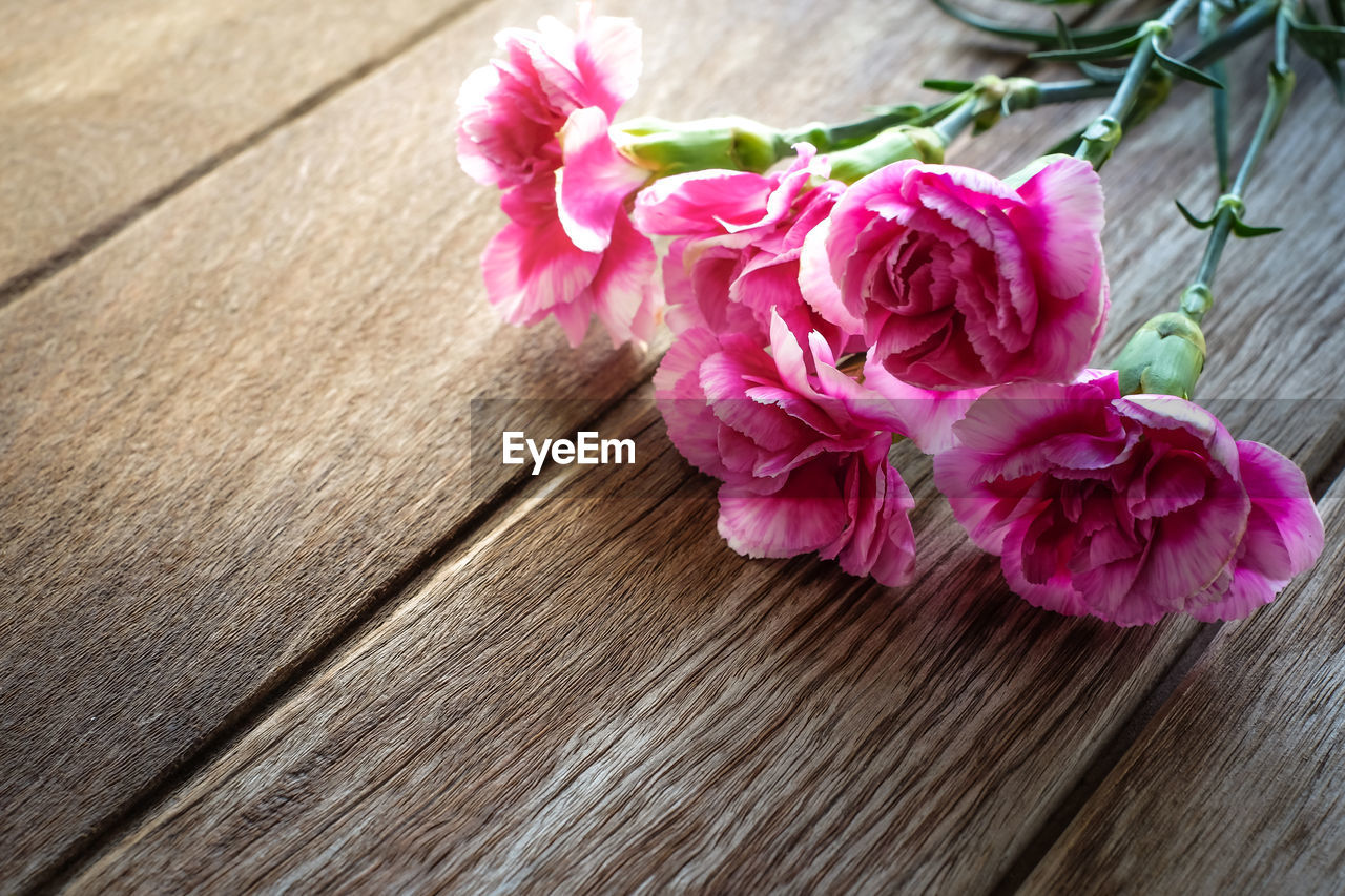 flower, flowering plant, pink color, plant, beauty in nature, close-up, freshness, petal, wood - material, fragility, vulnerability, no people, nature, flower head, inflorescence, outdoors, rose, day, wood, high angle view, flower arrangement, bouquet, wood grain
