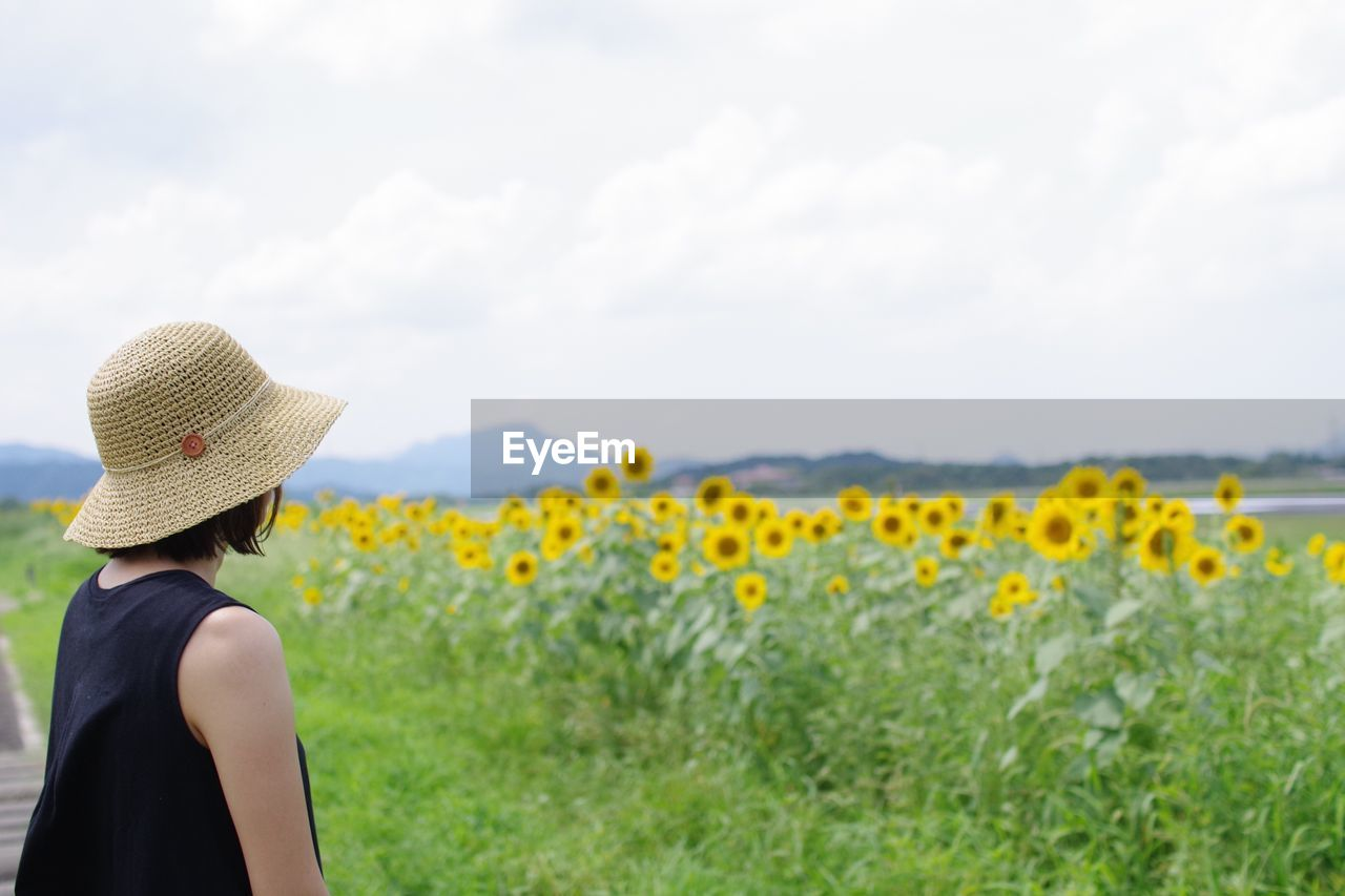 hat, one person, real people, leisure activity, clothing, plant, lifestyles, field, land, nature, women, adult, sky, day, beauty in nature, flowering plant, growth, rear view, sun hat, flower, yellow, outdoors, hairstyle