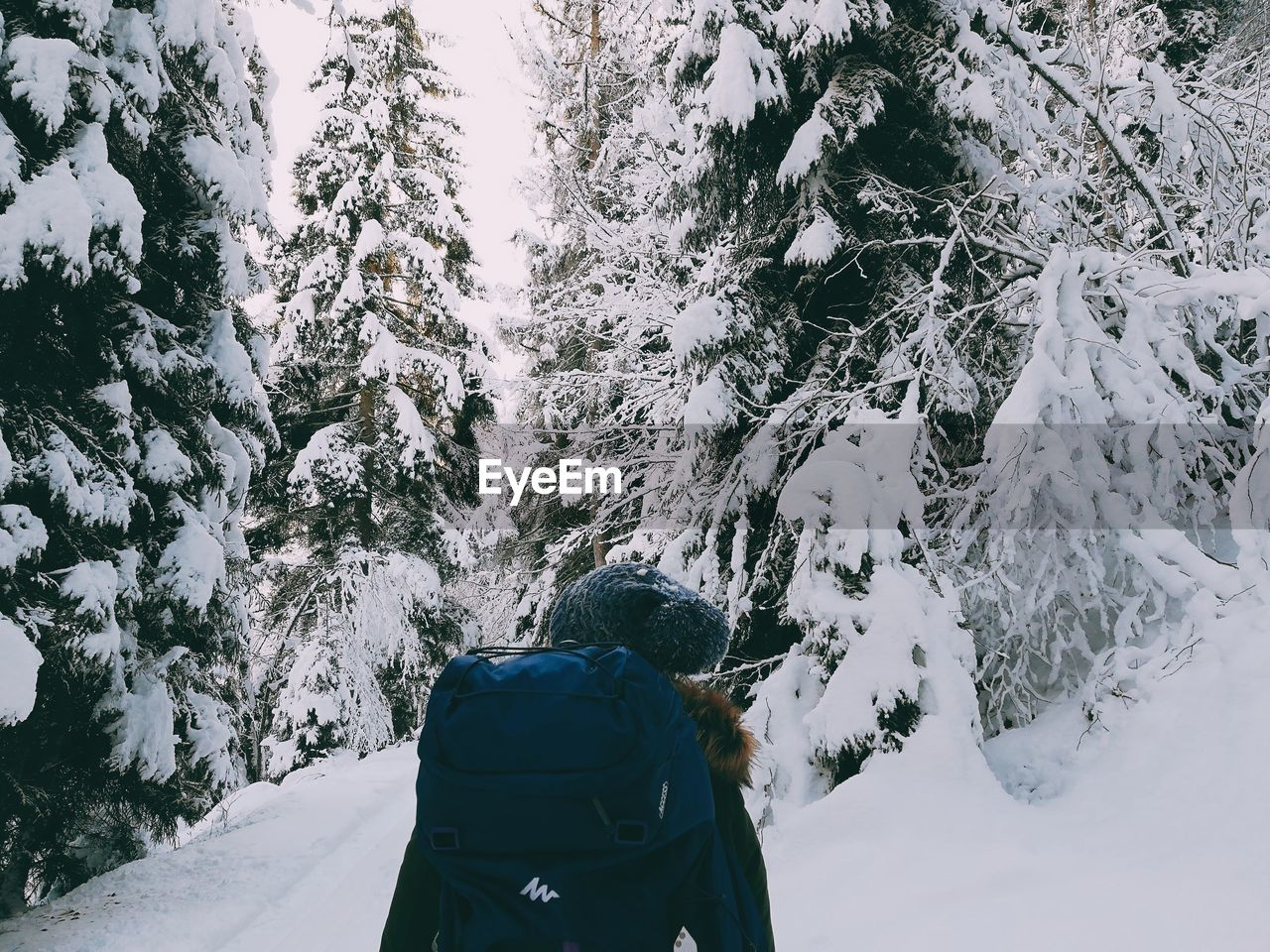 Rear View Of Woman With Backpack Hiking Amidst Snow Covered Trees