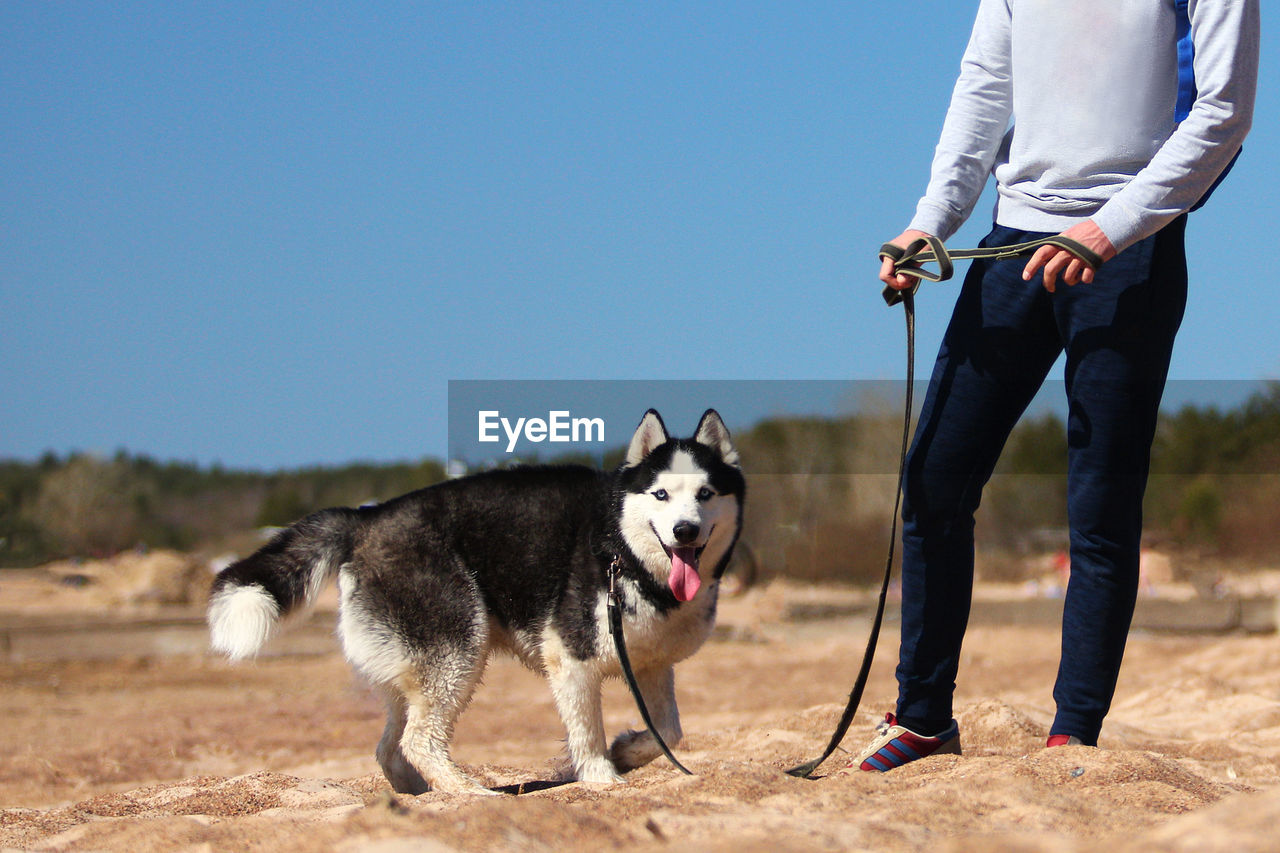 pets, domestic, domestic animals, dog, canine, one animal, mammal, real people, one person, vertebrate, nature, low section, sky, day, standing, casual clothing, land, pet owner, outdoors, jeans