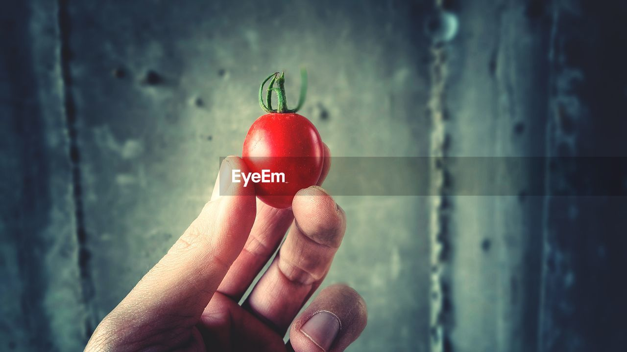 Close-Up Of Hand Holding Cherry Tomato