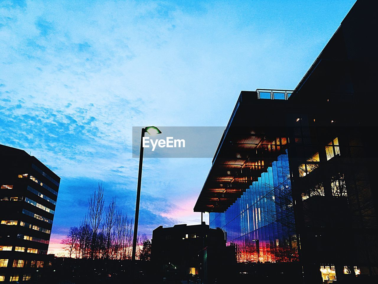 building exterior, sky, architecture, built structure, city, illuminated, low angle view, street light, nature, street, cloud - sky, sign, dusk, no people, lighting equipment, blue, outdoors, tree, building, text, office building exterior, skyscraper