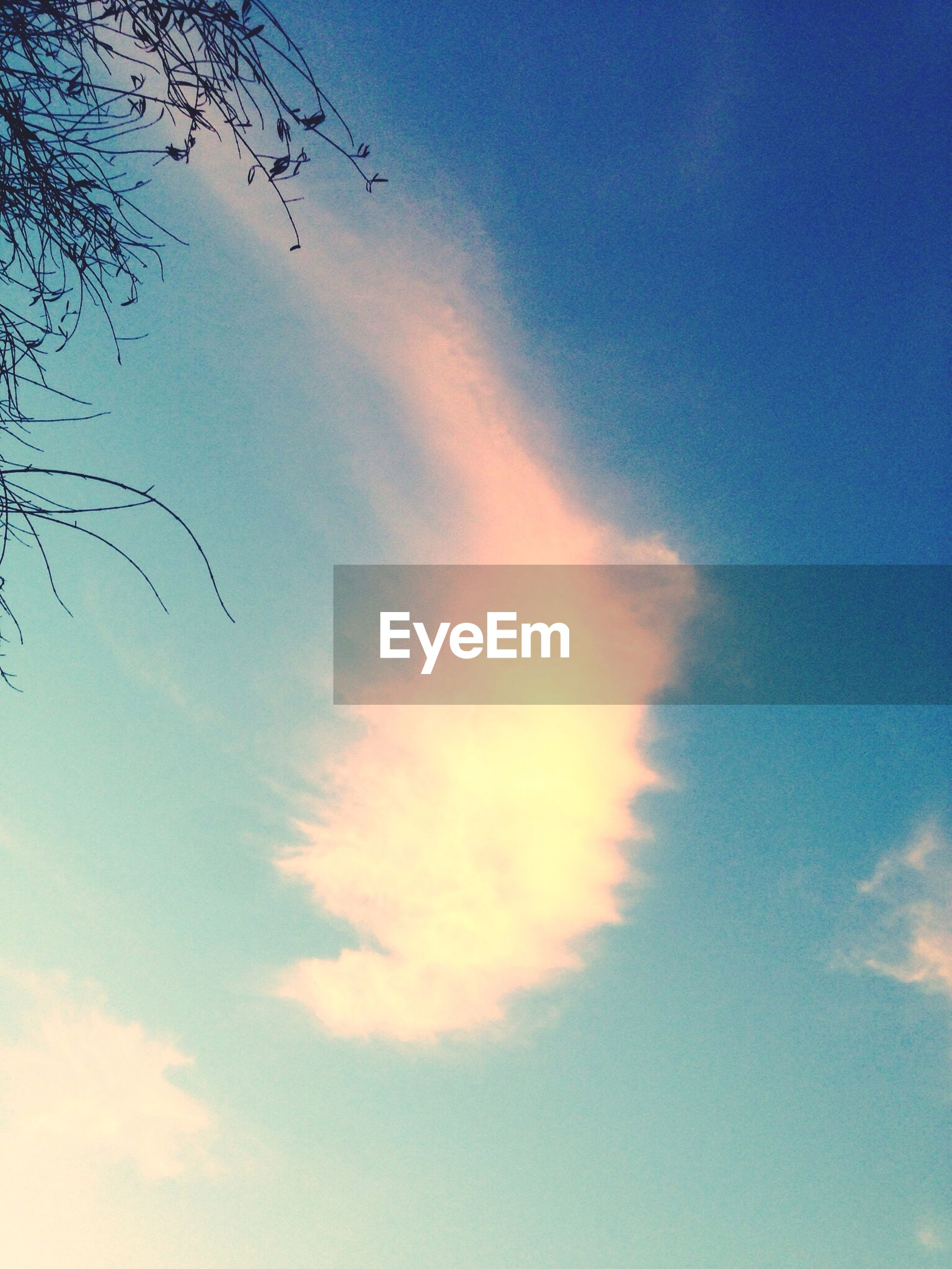 low angle view, sky, blue, cloud - sky, beauty in nature, tranquility, nature, scenics, cloud, tranquil scene, outdoors, sunset, no people, silhouette, cloudy, idyllic, sky only, day, tree, backgrounds