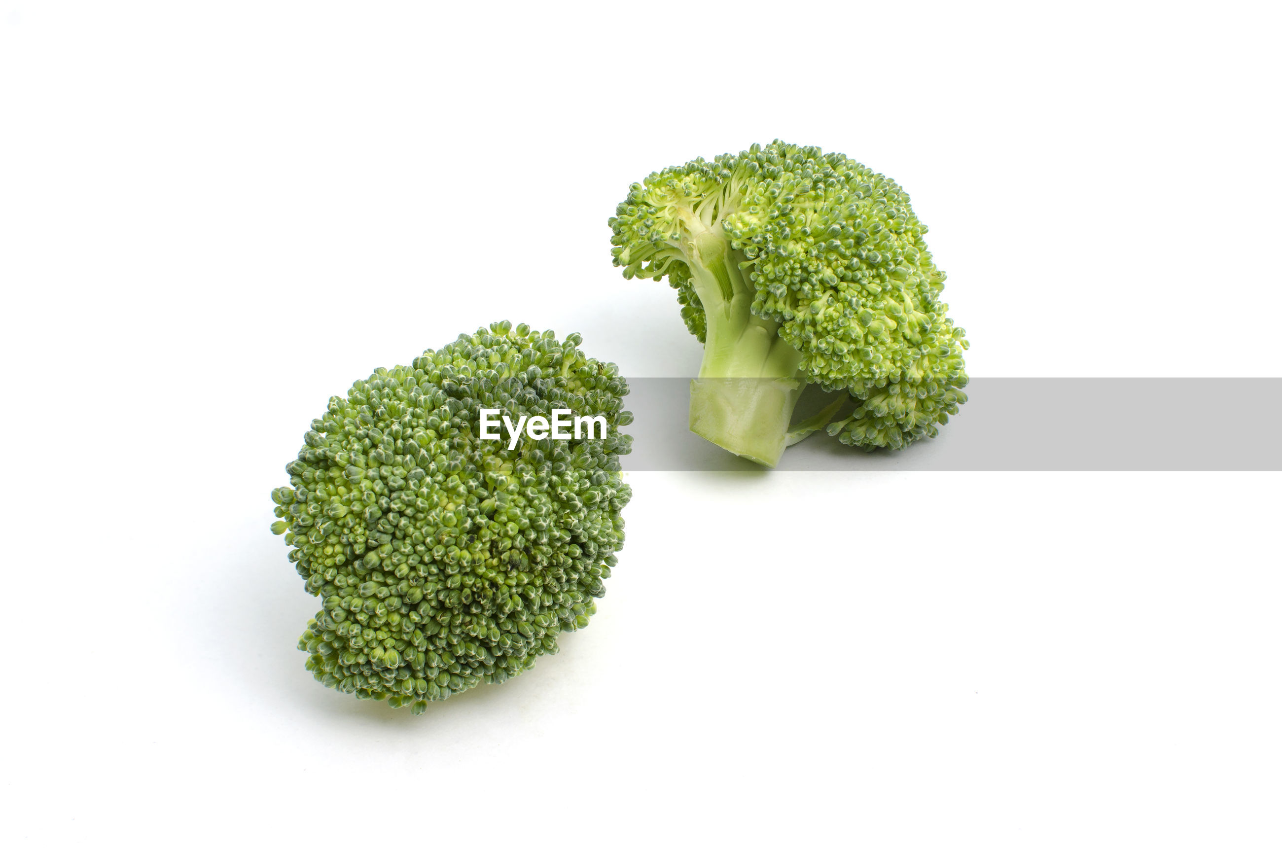 High angle view of broccoli against white background