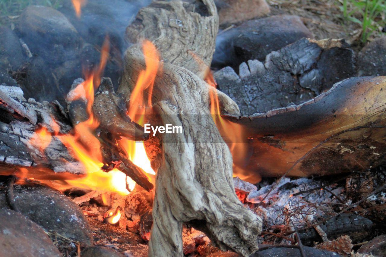 burning, fire - natural phenomenon, fire, heat - temperature, flame, log, wood, nature, wood - material, bonfire, glowing, firewood, no people, burnt, orange color, close-up, ash, outdoors, coal, smoke - physical structure, campfire