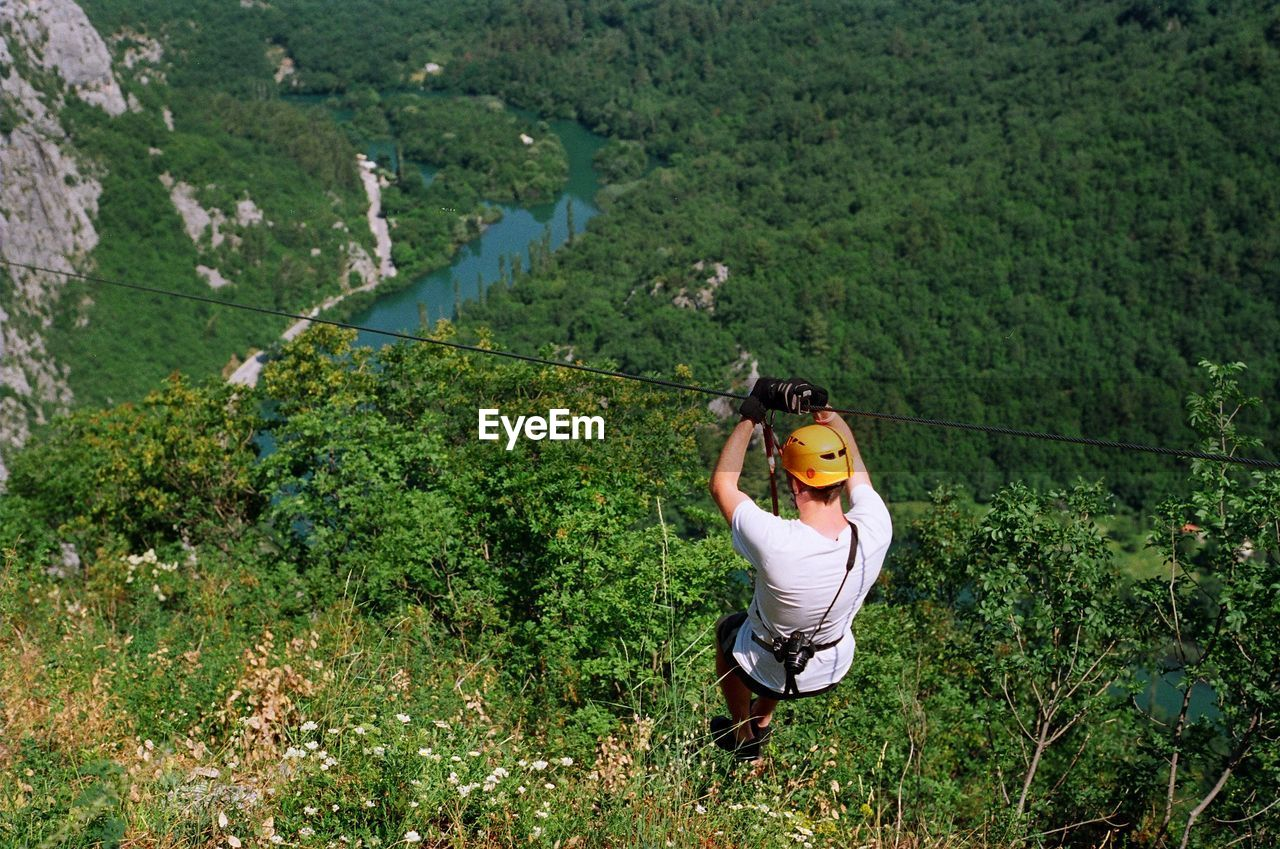 High angle view of man rappelling over lush foliage
