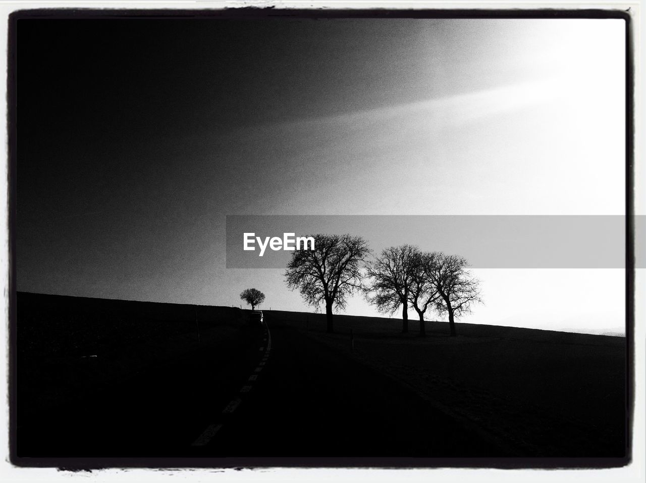 Silhouette Trees On Field Against Sky On Sunny Day