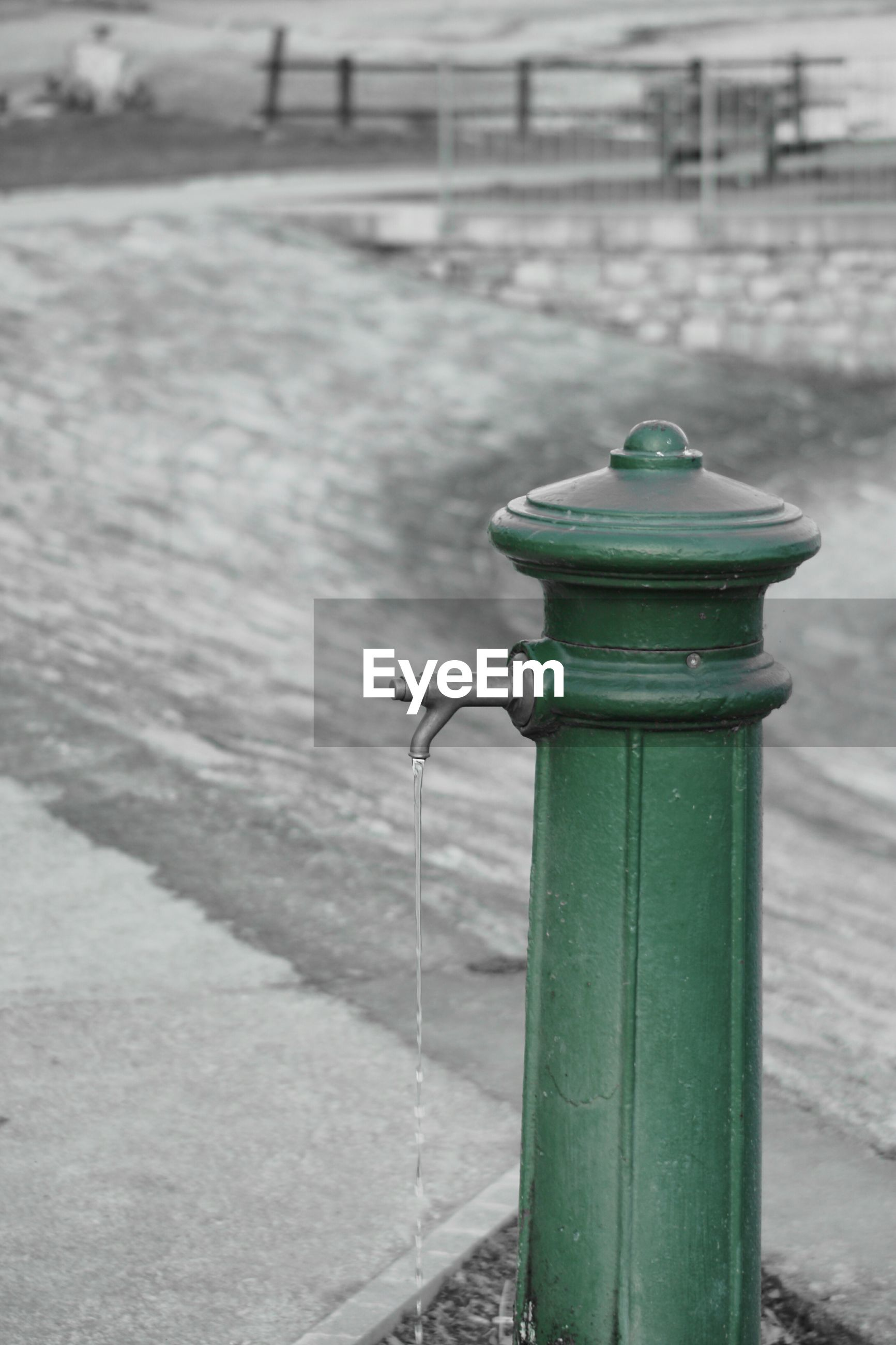 focus on foreground, outdoors, day, green color, close-up, no people, water, fire hydrant, cleat, nature