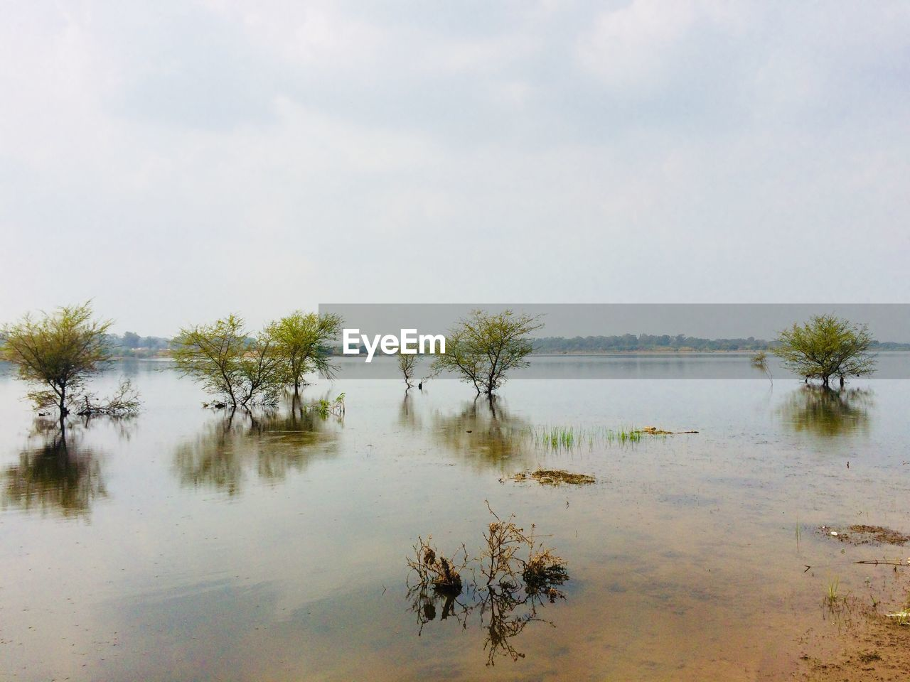 water, nature, reflection, beauty in nature, scenics, no people, outdoors, lake, tranquil scene, tranquility, day, tree, sky