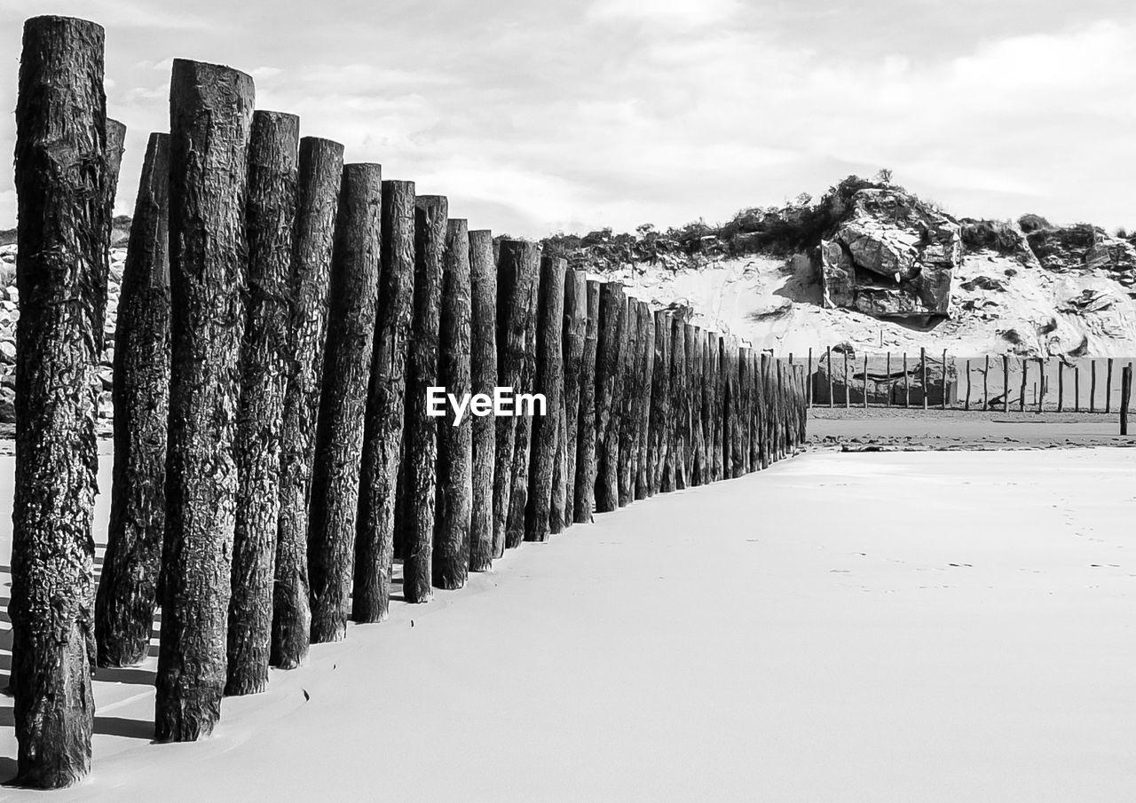 Wooden Posts On Beach