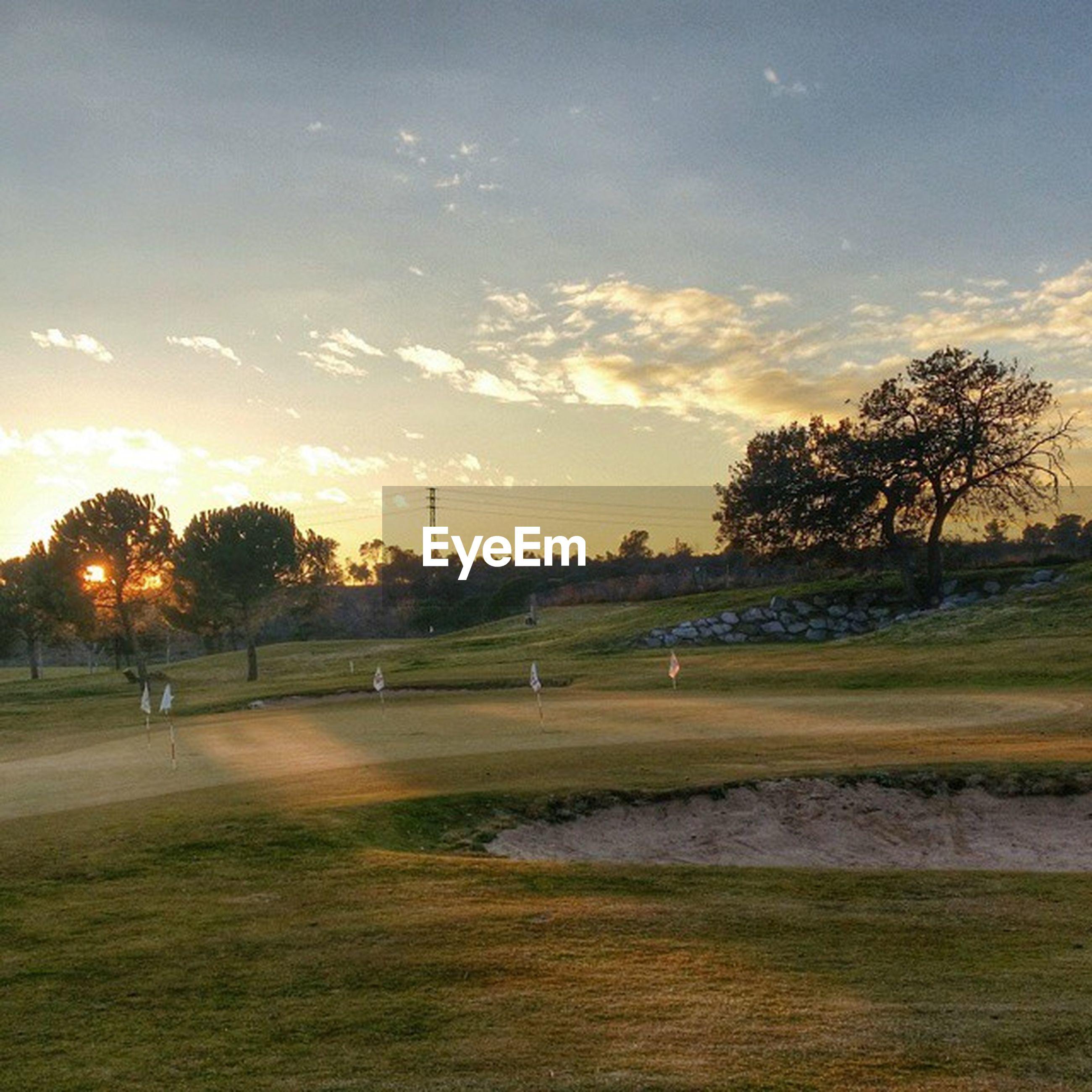 sunset, tree, sky, tranquil scene, landscape, tranquility, grass, field, scenics, sun, beauty in nature, nature, cloud - sky, sunlight, grassy, orange color, idyllic, silhouette, growth, non-urban scene