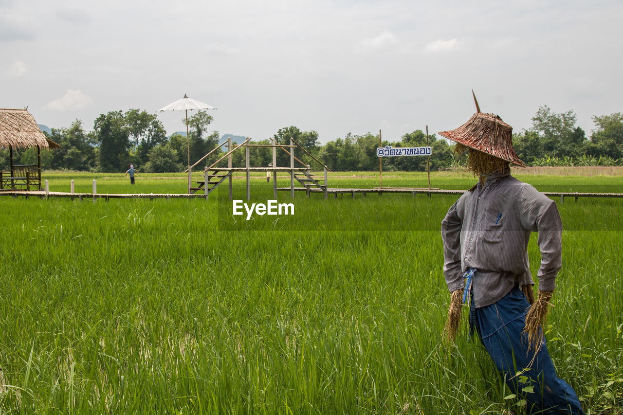 Scarecrow on agricultural field