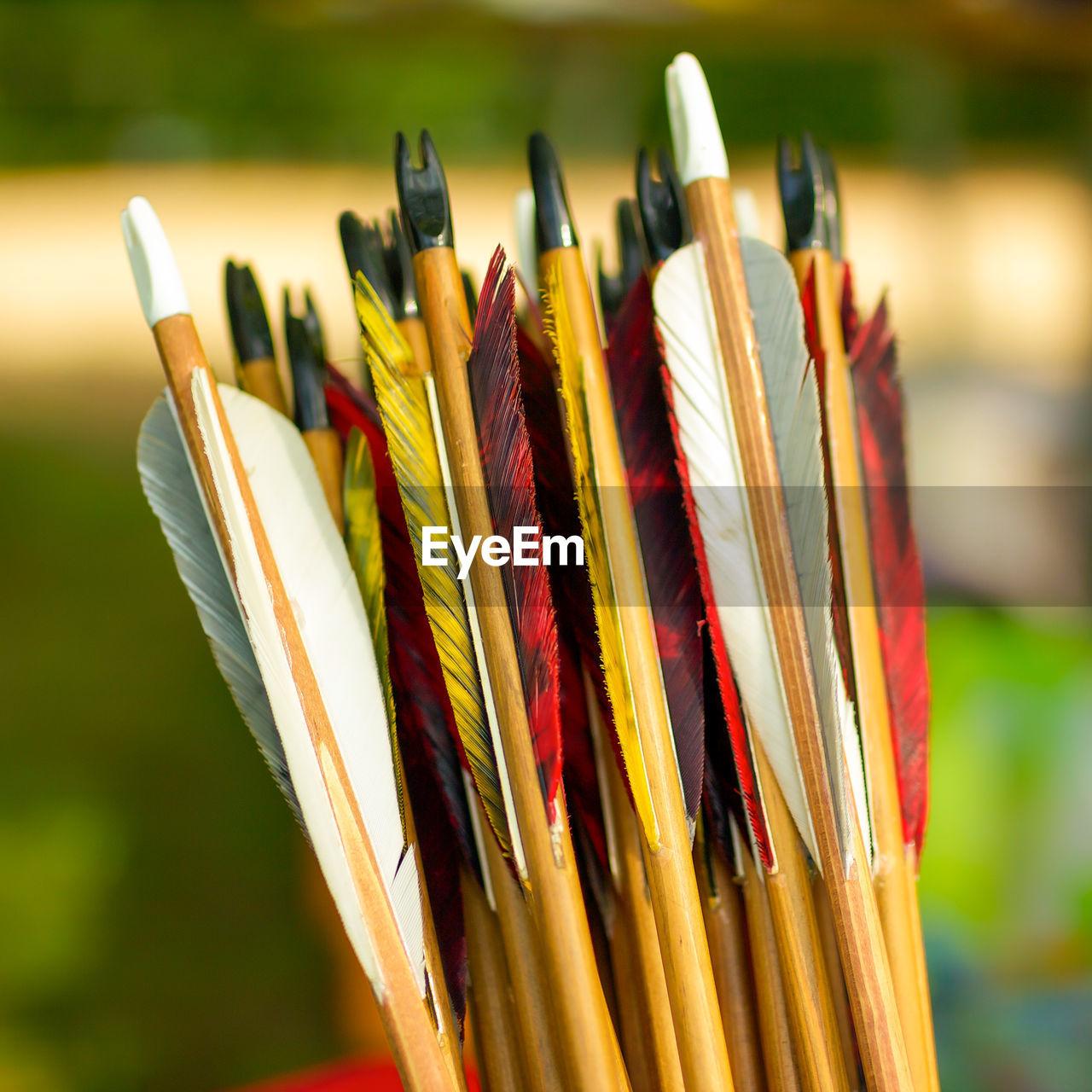 Close-Up Of Archery Arrows