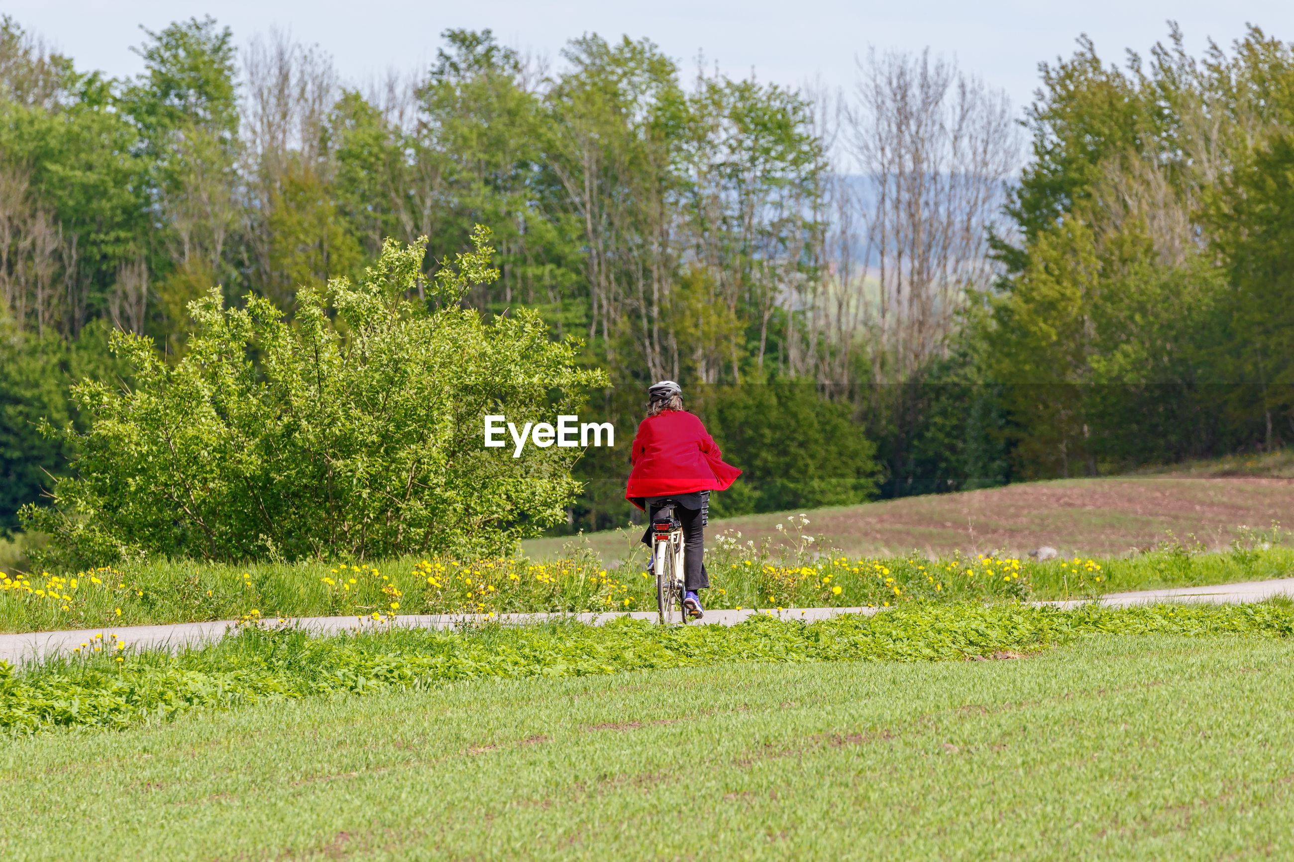 Rear view of woman riding bicycle on field